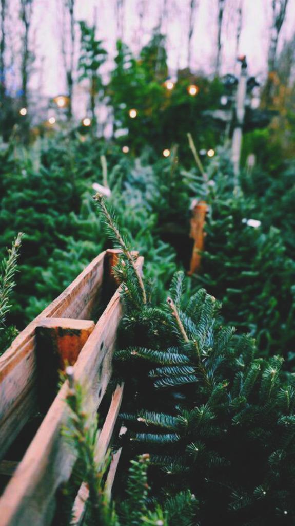Christmas Lockscreens - Iphone 7 Tumblr Christmas , HD Wallpaper & Backgrounds