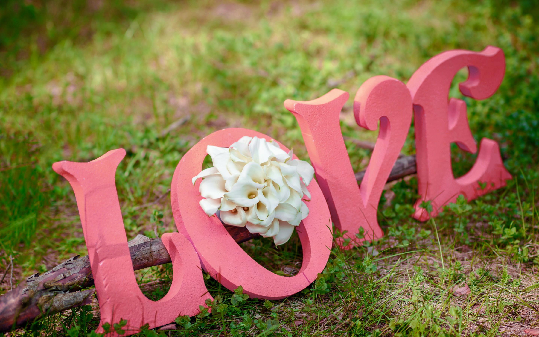 Download Original - Love Flower Photo Hd , HD Wallpaper & Backgrounds