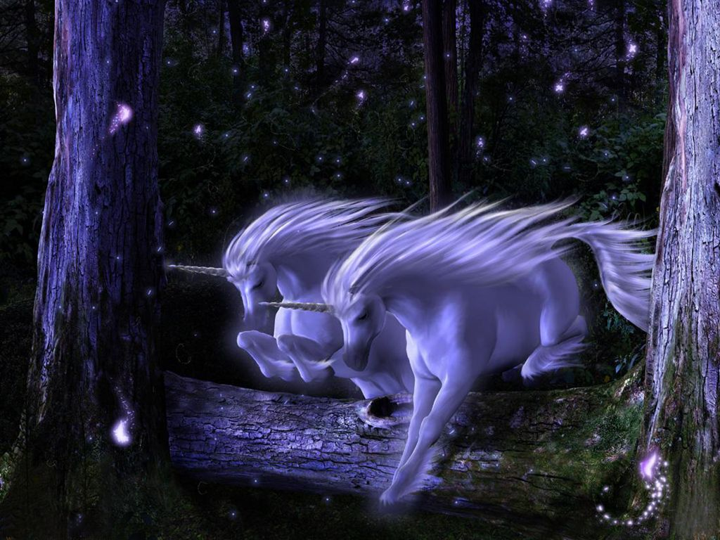 Enchanted Fantasy Horse Sky Stars Tree Unicorn Magic Horses 423411 Hd Wallpaper Backgrounds Download