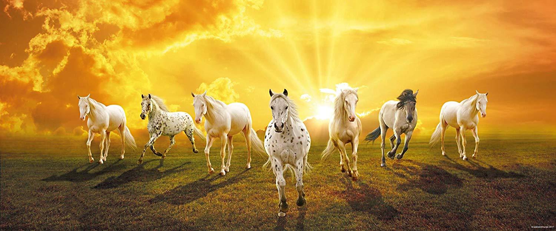 Buy Walls And Murals 7 Running Horses Vastu Painting Vastu 7