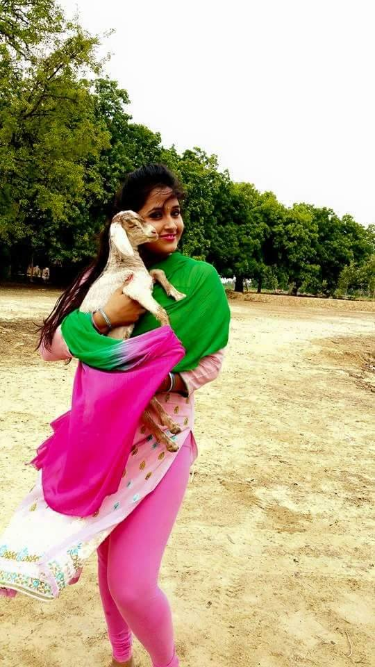 Kajal Raghwani Hot Pics In Pink Dress - Kajal Raghwani Hot Sexy , HD Wallpaper & Backgrounds