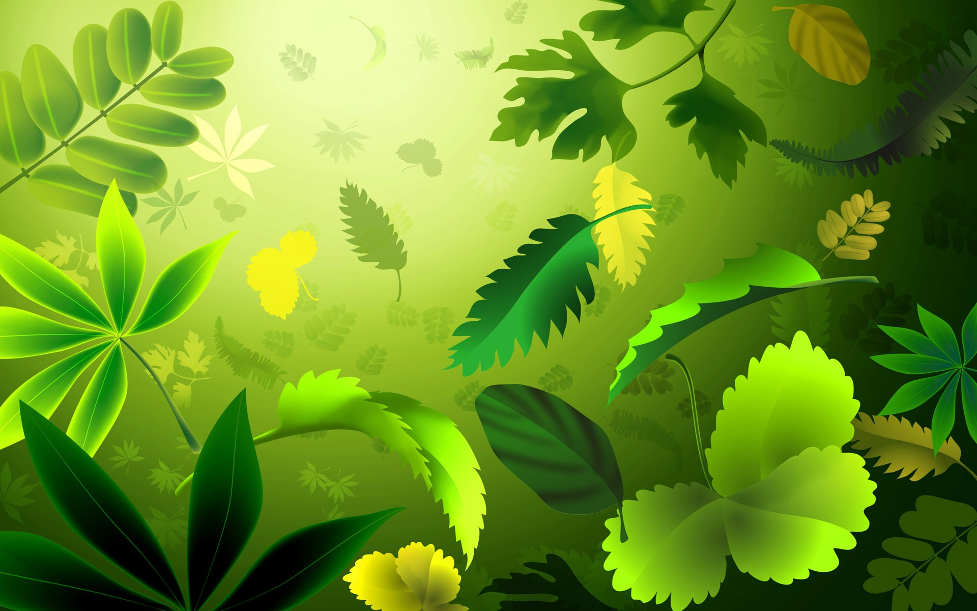 Green Full Hd Wallpaper Download Cool Images Download - Nature Background Clip Art , HD Wallpaper & Backgrounds
