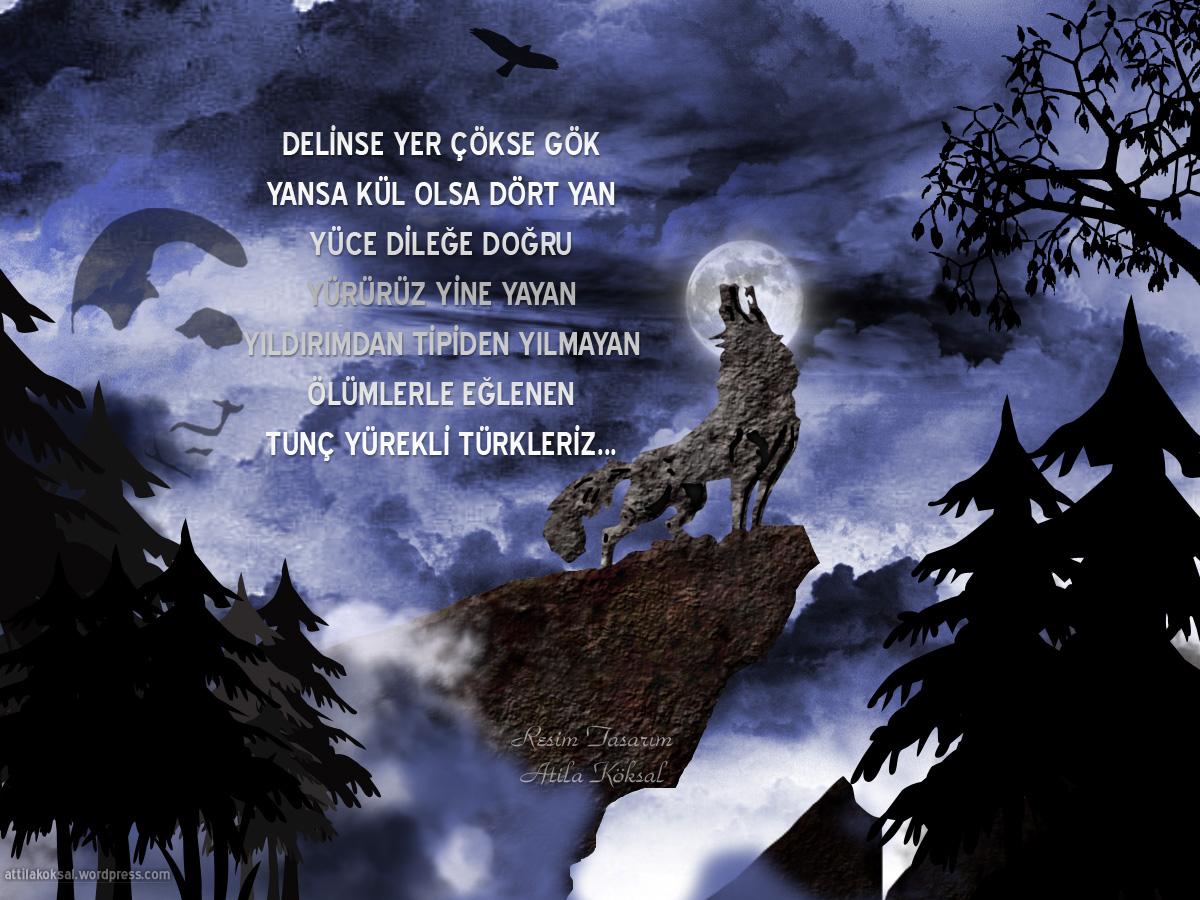 Bozkurt Wallpaper Hd Telefon Poster 437847 Hd
