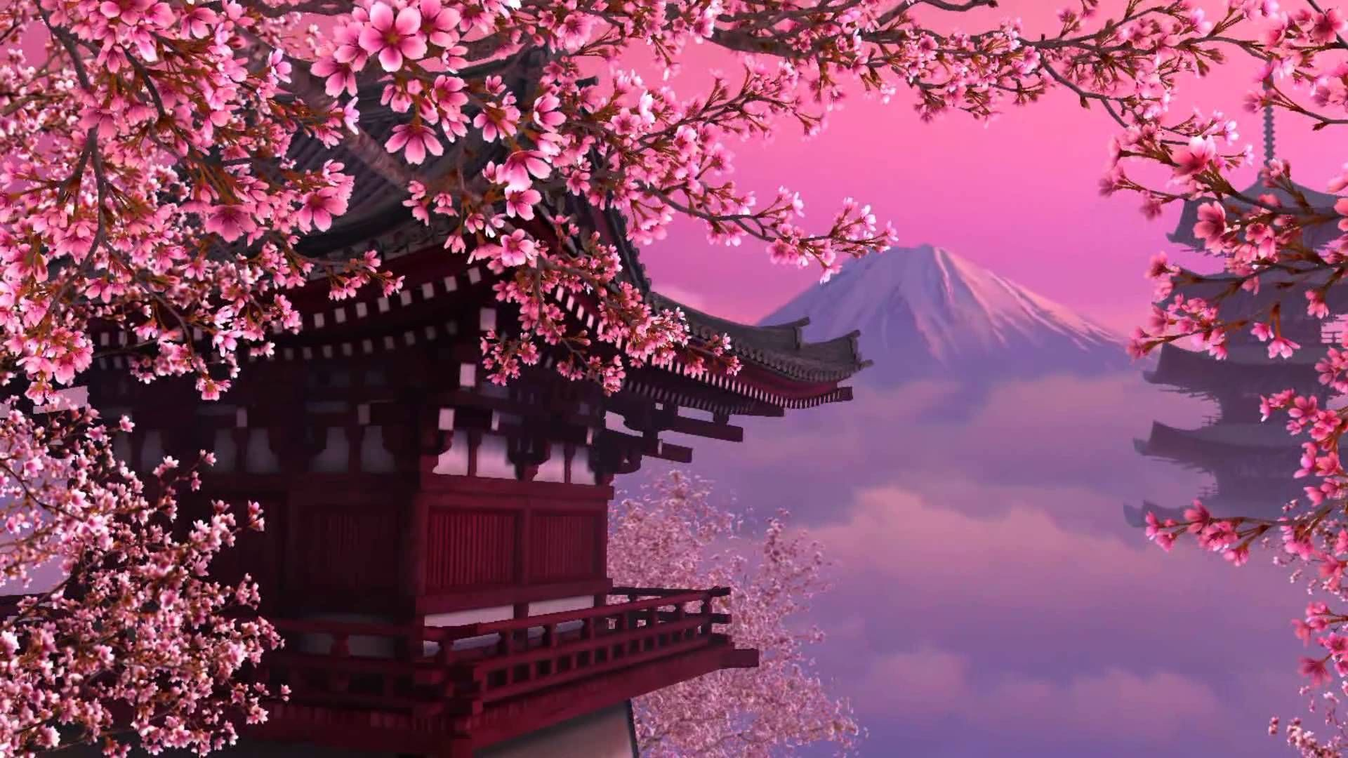 237 Cherry Blossom Hd Wallpapers - Cherry Blossom Japan Hd , HD Wallpaper & Backgrounds