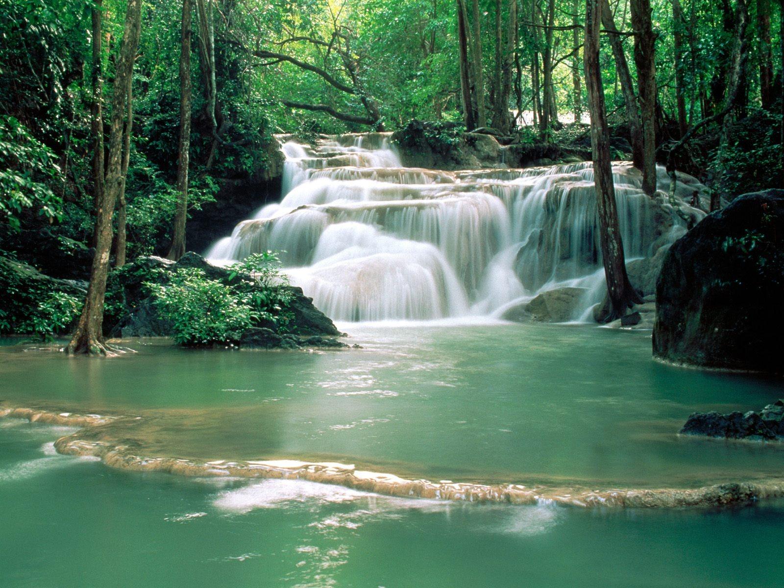 Beautiful Nature Wallpaper Free Download - Natural Beauty , HD Wallpaper & Backgrounds