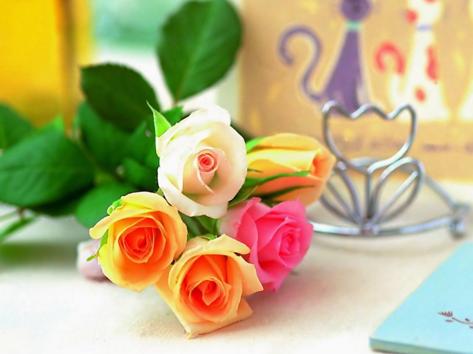 Beauty Full Flower Hd 451686 Hd Wallpaper Backgrounds Download