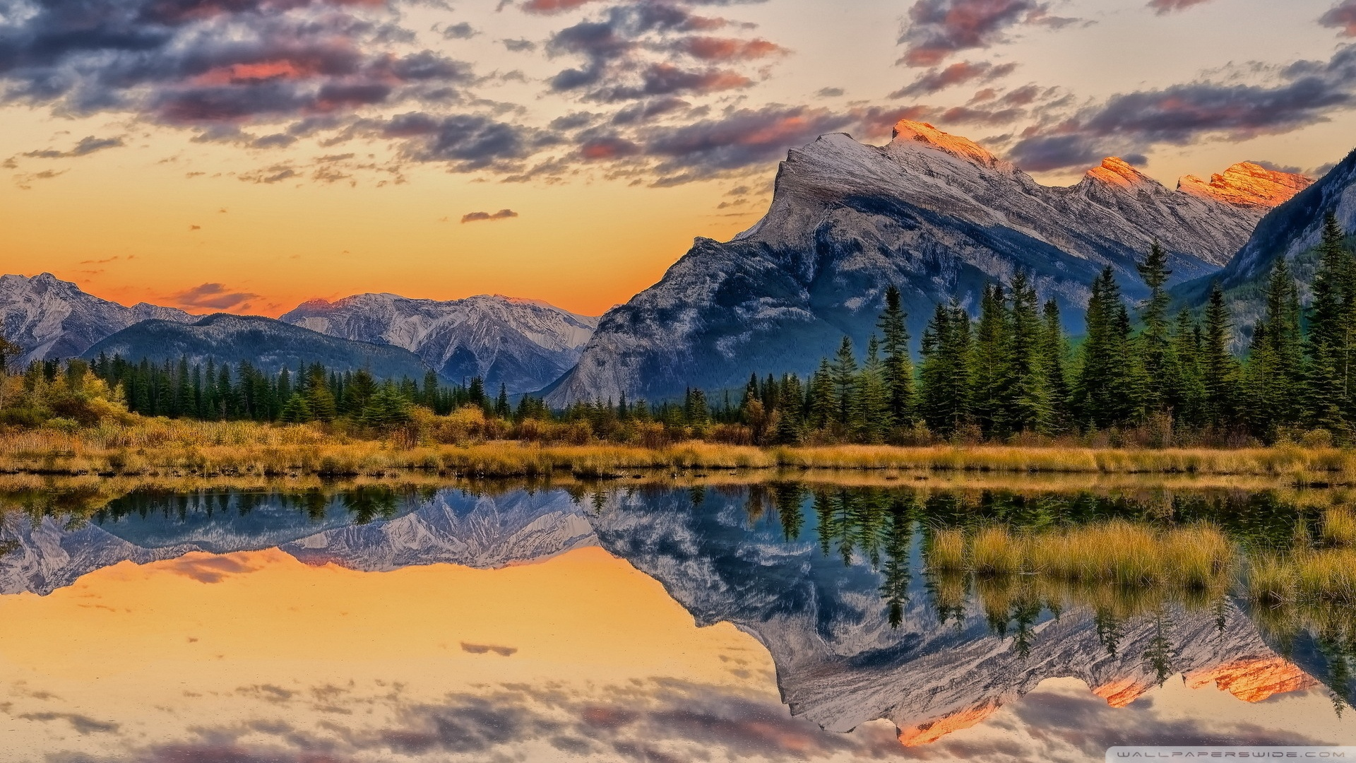 100773856 Wide Hd - Mount Rundle , HD Wallpaper & Backgrounds