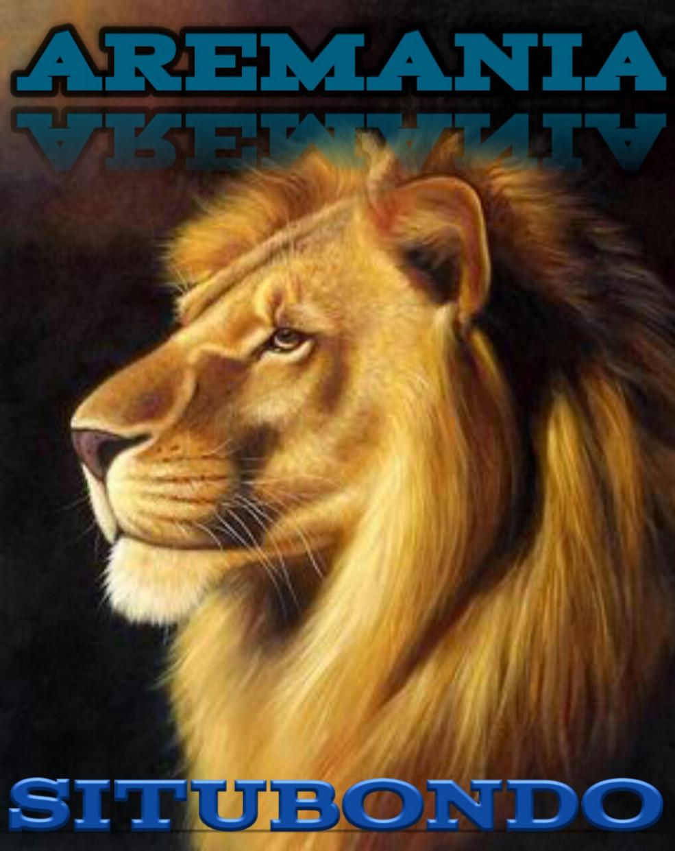 Wallpaper Arema Singo Edan Paling Keren Have No Fear Lion