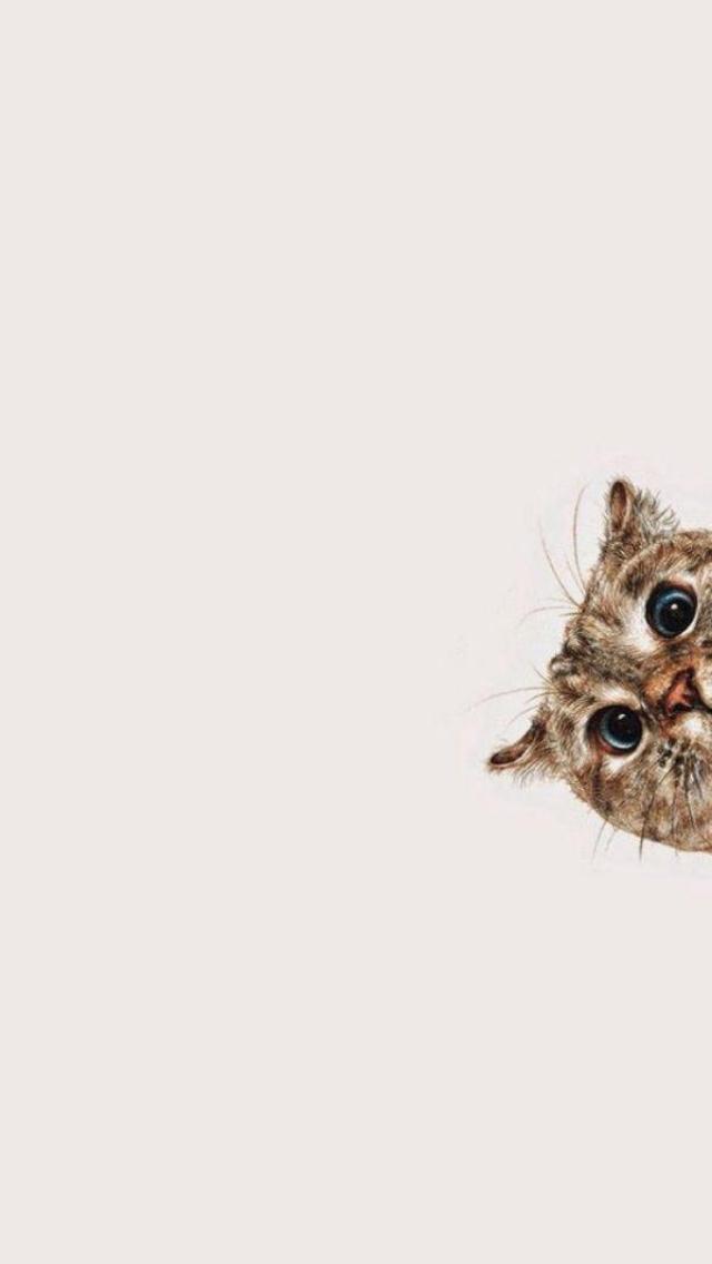 Simplistic Cat Wallpaper Lockscreen Cats Cute 477927 Hd Wallpaper Backgrounds Download