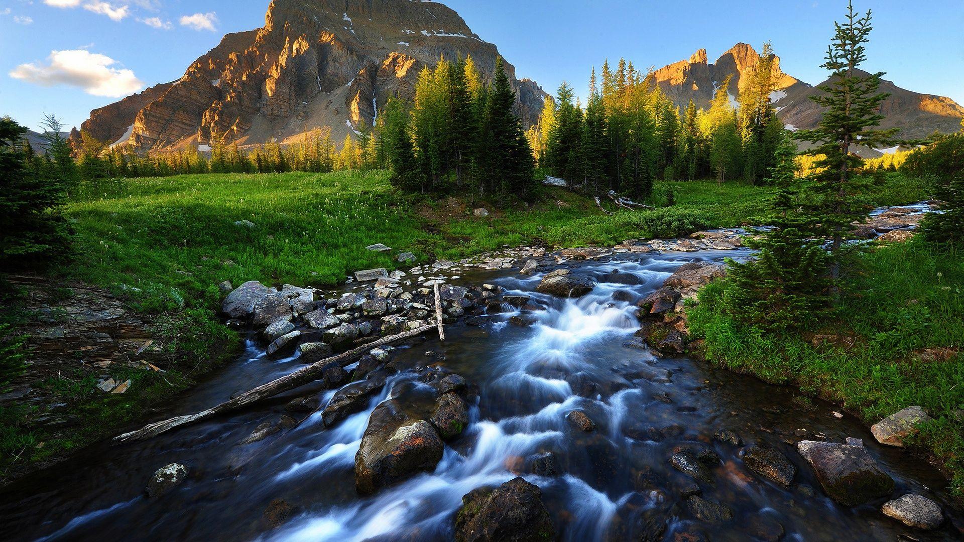 Beautiful Landscape Pictures - Oil Paintings Art Landscape , HD Wallpaper & Backgrounds