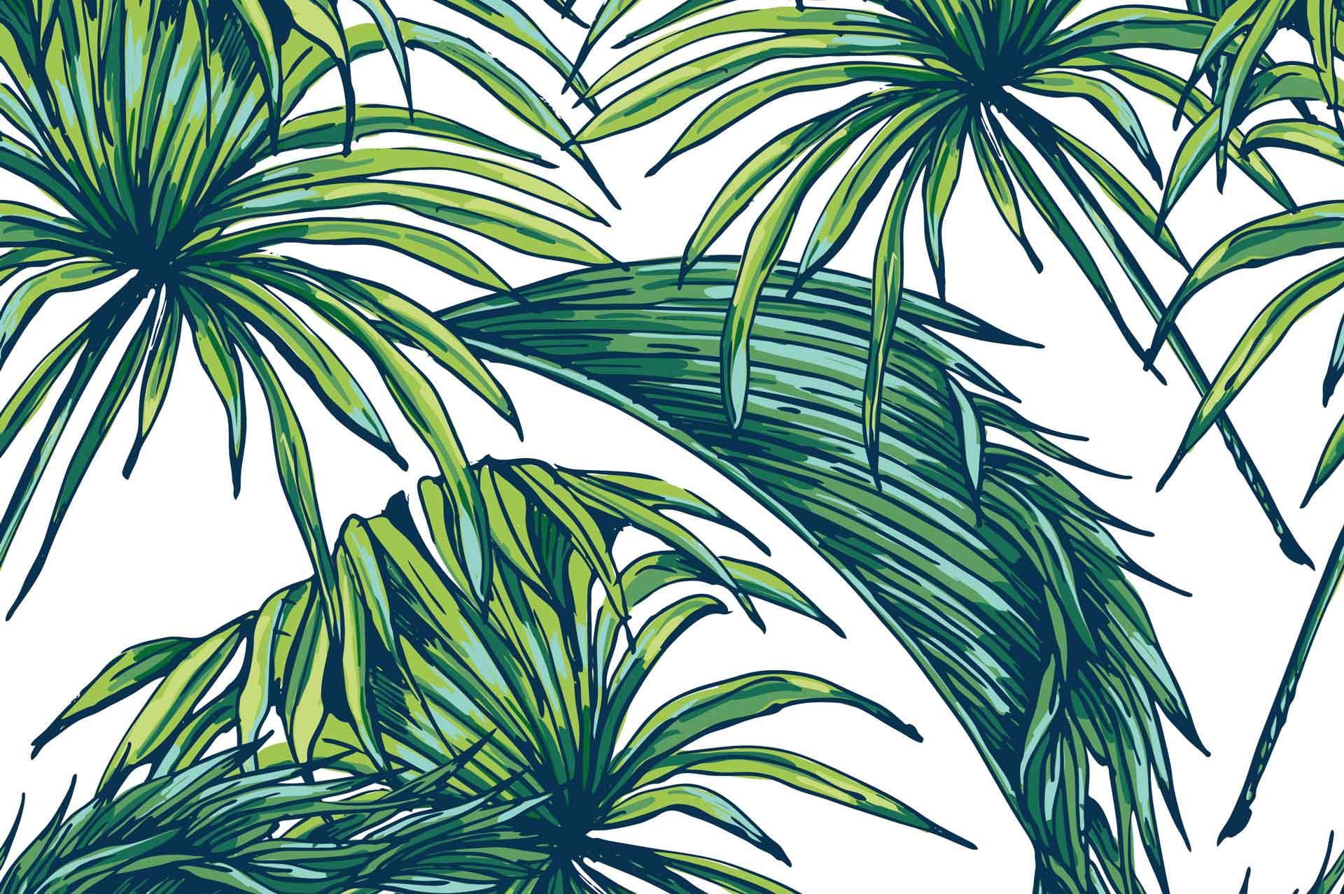 Carasaven Greenpalmleaves Wallpaper Palm Leaves Wallpaper Hd 481947 Hd Wallpaper Backgrounds Download We have a massive amount of hd images that will make your. palm leaves wallpaper hd
