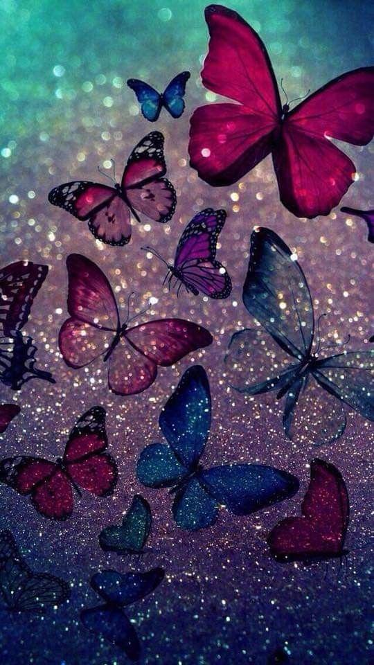Pin By Tammy Hosey On Beautiful Butterflies - Fondos De Pantalla De Mariposas , HD Wallpaper & Backgrounds