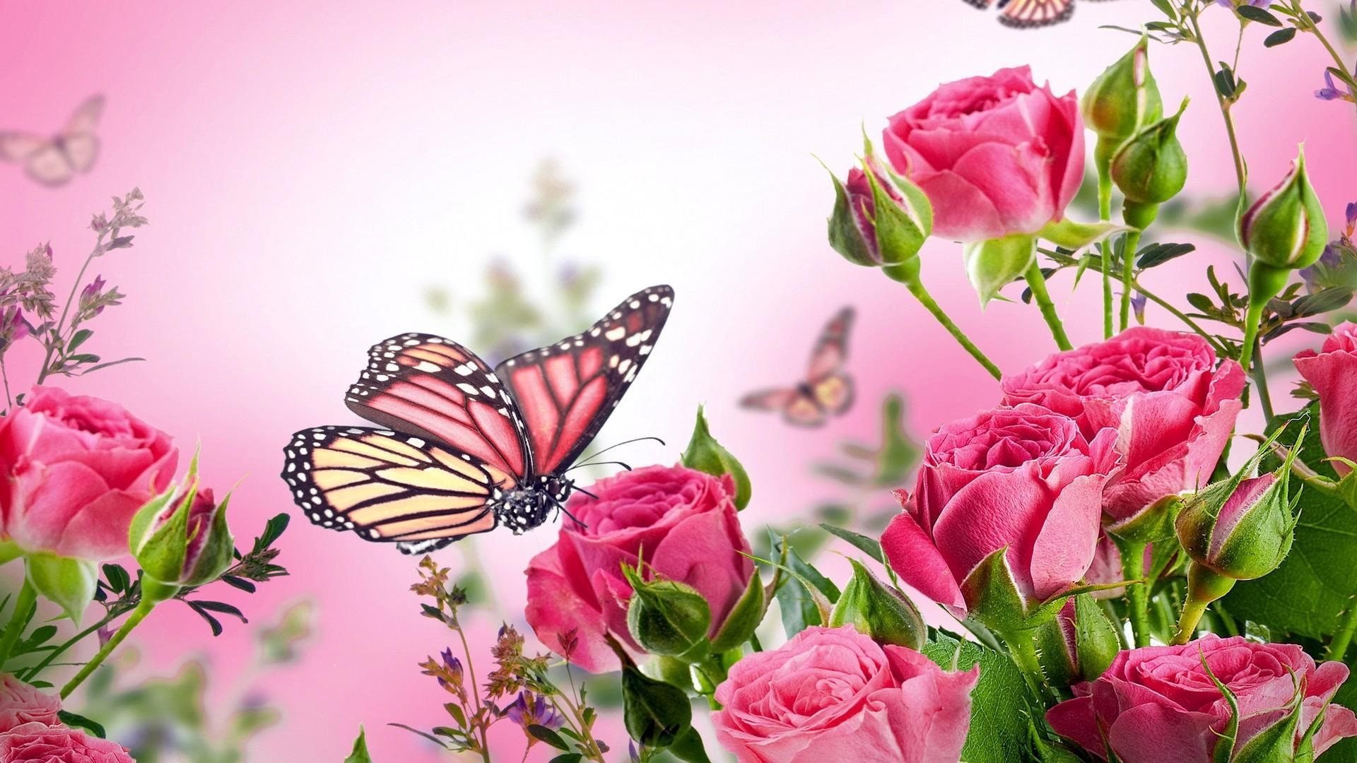Pink Butterfly Wallpaper Hd - Flowers And Butterflies Background , HD Wallpaper & Backgrounds