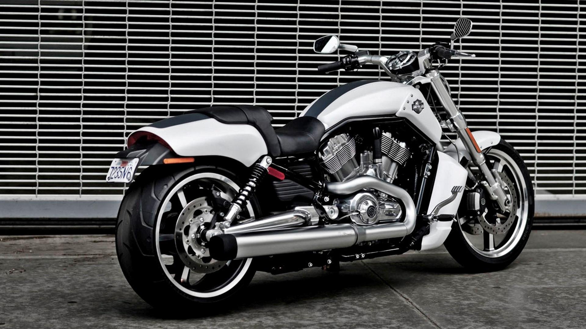 White Bike Harley Davidson Hd Wallpapers Harley Davidson V Rod