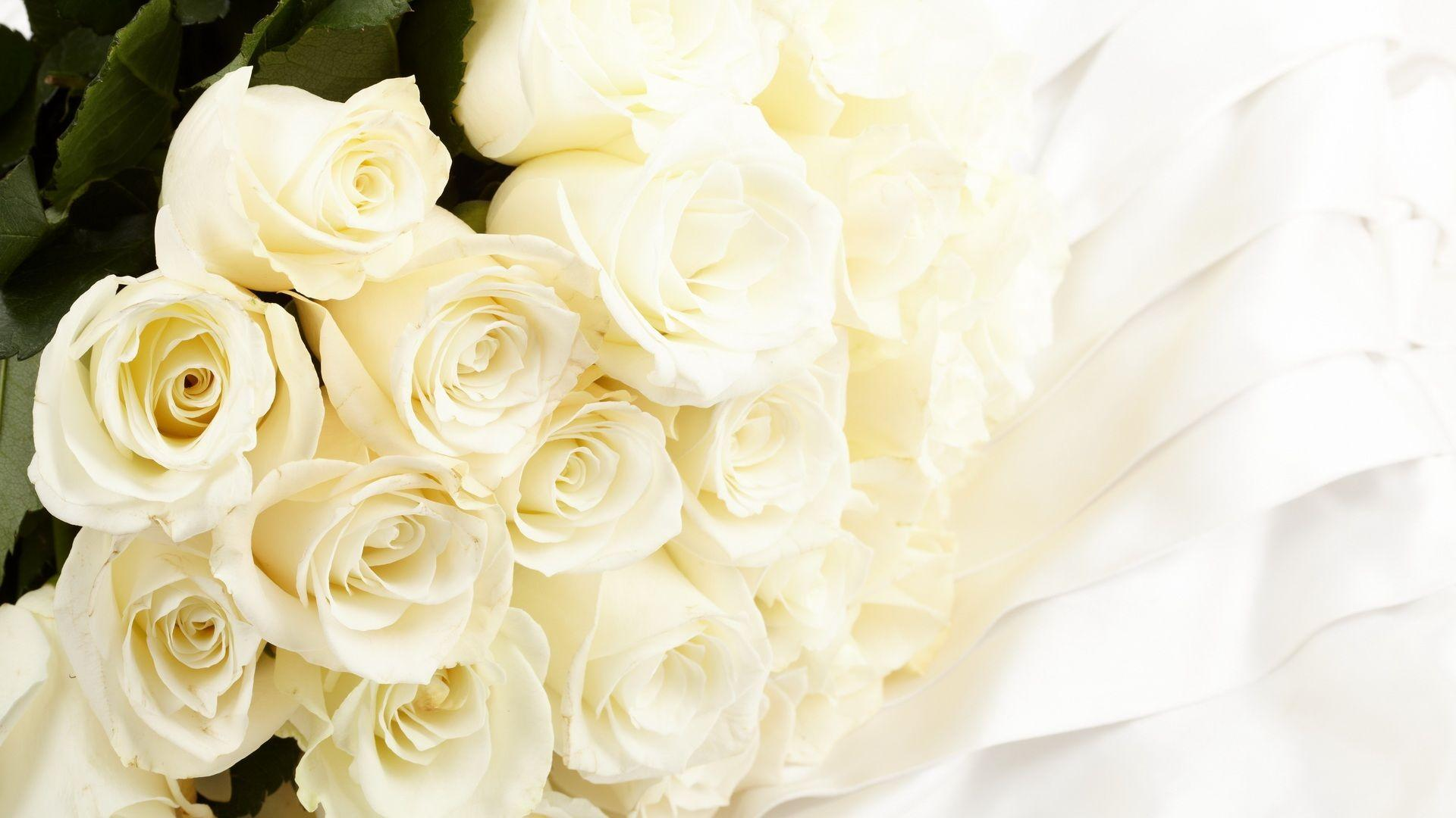 White Rose Wallpapers & Pictures - Bunch Of White Roses , HD Wallpaper & Backgrounds