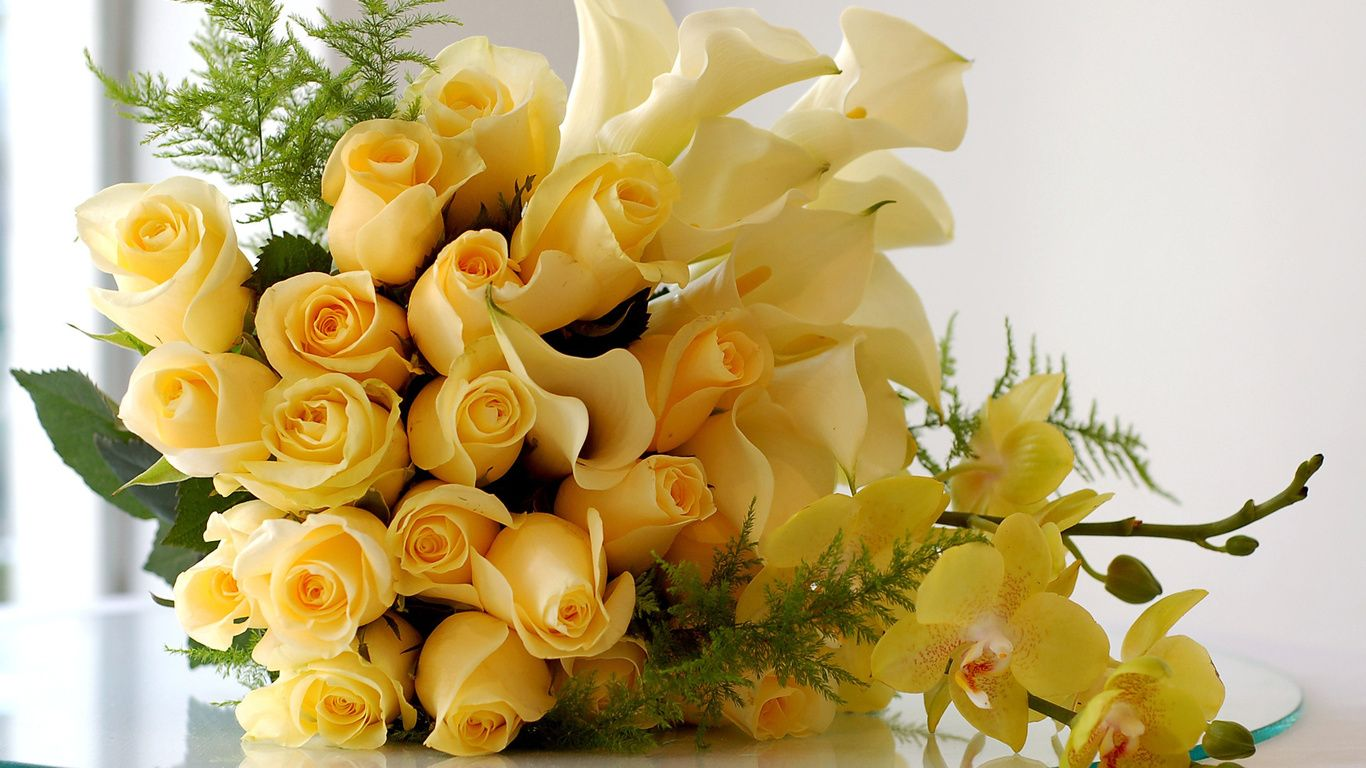 Yellow Roses Wallpapers - Calla Lily Flowers Hd , HD Wallpaper & Backgrounds
