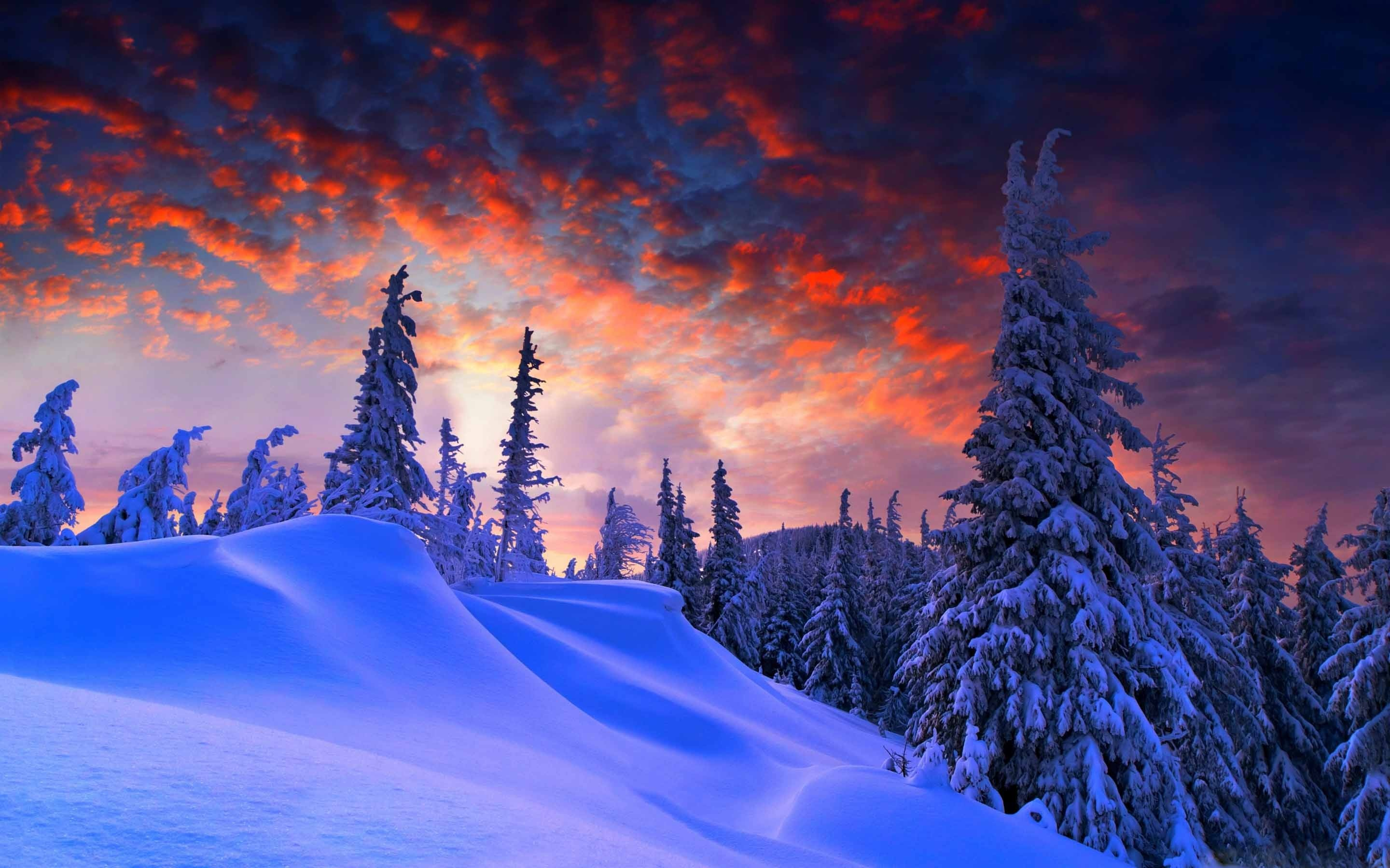 Res 2560x1440 Winter Mountain 51449 Hd Wallpaper