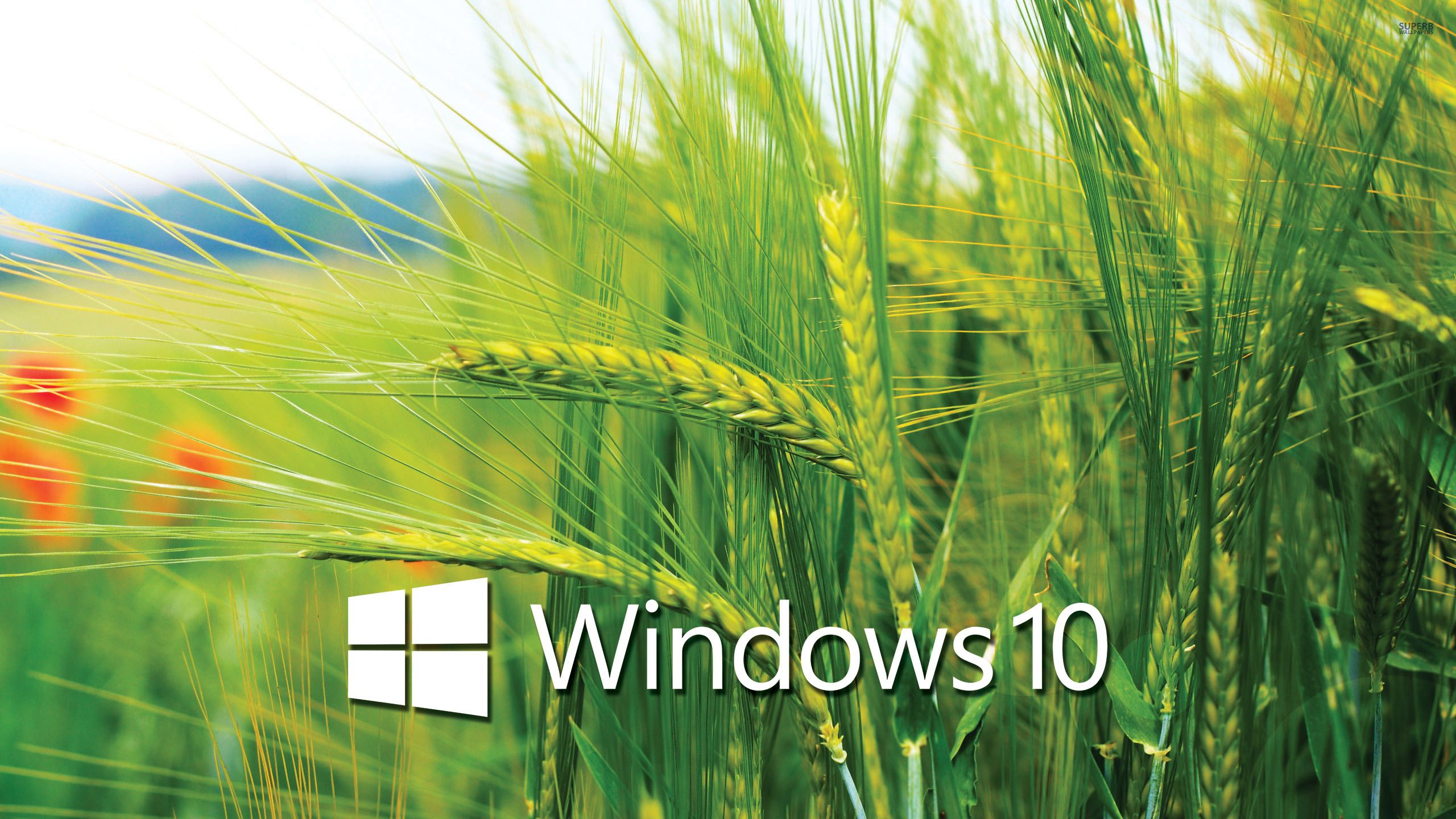 Windows 10 Transparent Wallpapers Hd Wallpapers For Laptop