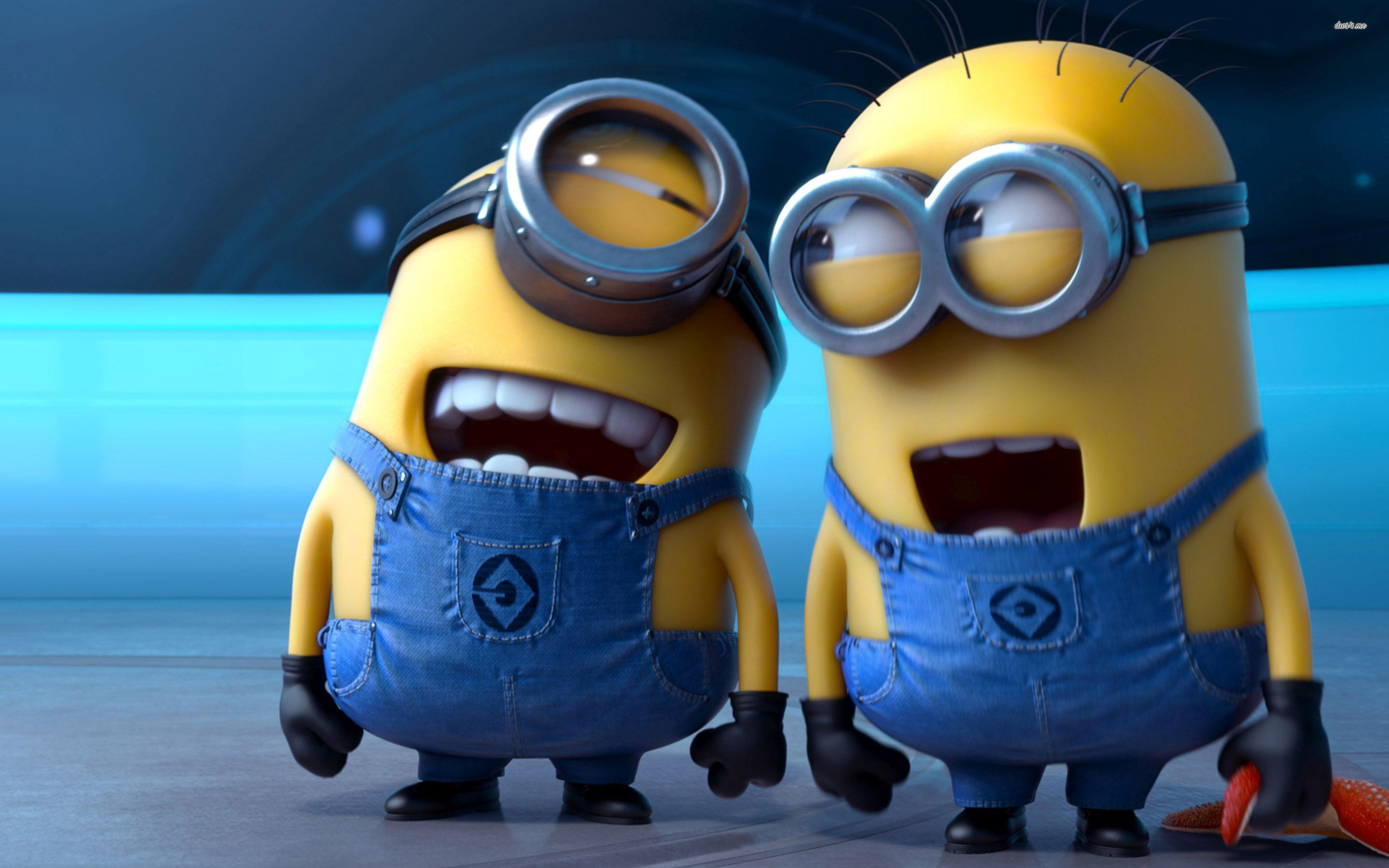 Minions Hd Minions Hd Wallpapers For Desktop 59346 Hd Wallpaper Backgrounds Download Funny minions wallpapers minions minions backgrounds 1920×1107. minions hd minions hd wallpapers for