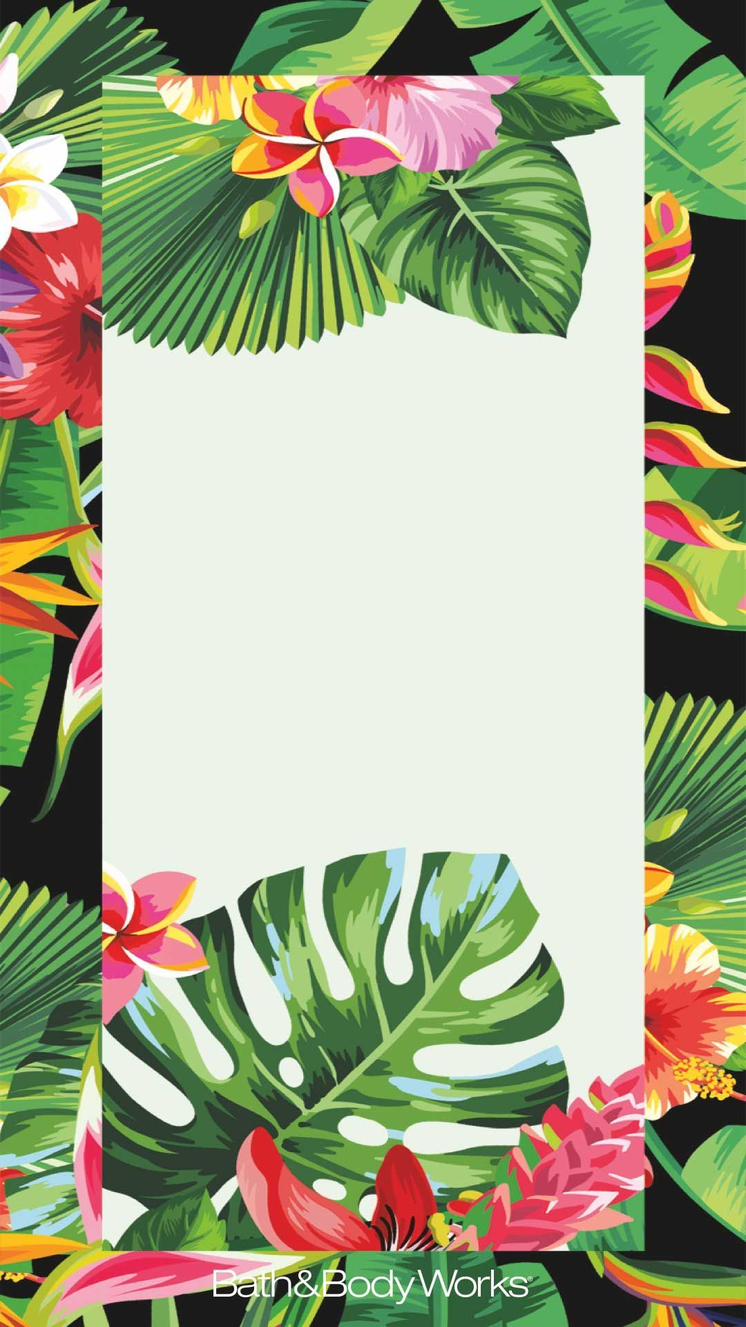 Tropical Flowers Palm Leaves Iphone Wallpaper Also Tropical Flower Wallpaper Iphone 503411 Hd Wallpaper Backgrounds Download Today's video is a tropical leaves green screen pack. tropical flowers palm leaves iphone