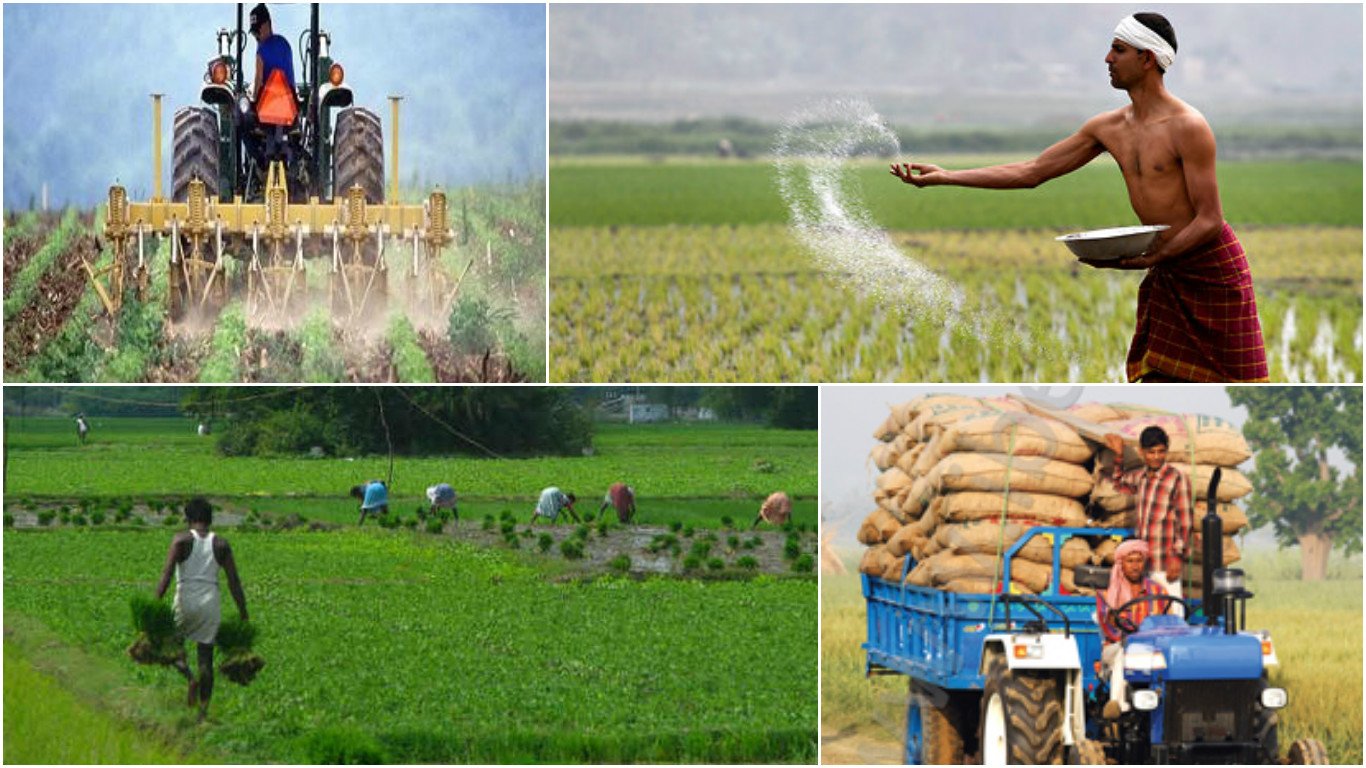 Agriculture And Agrochemical India