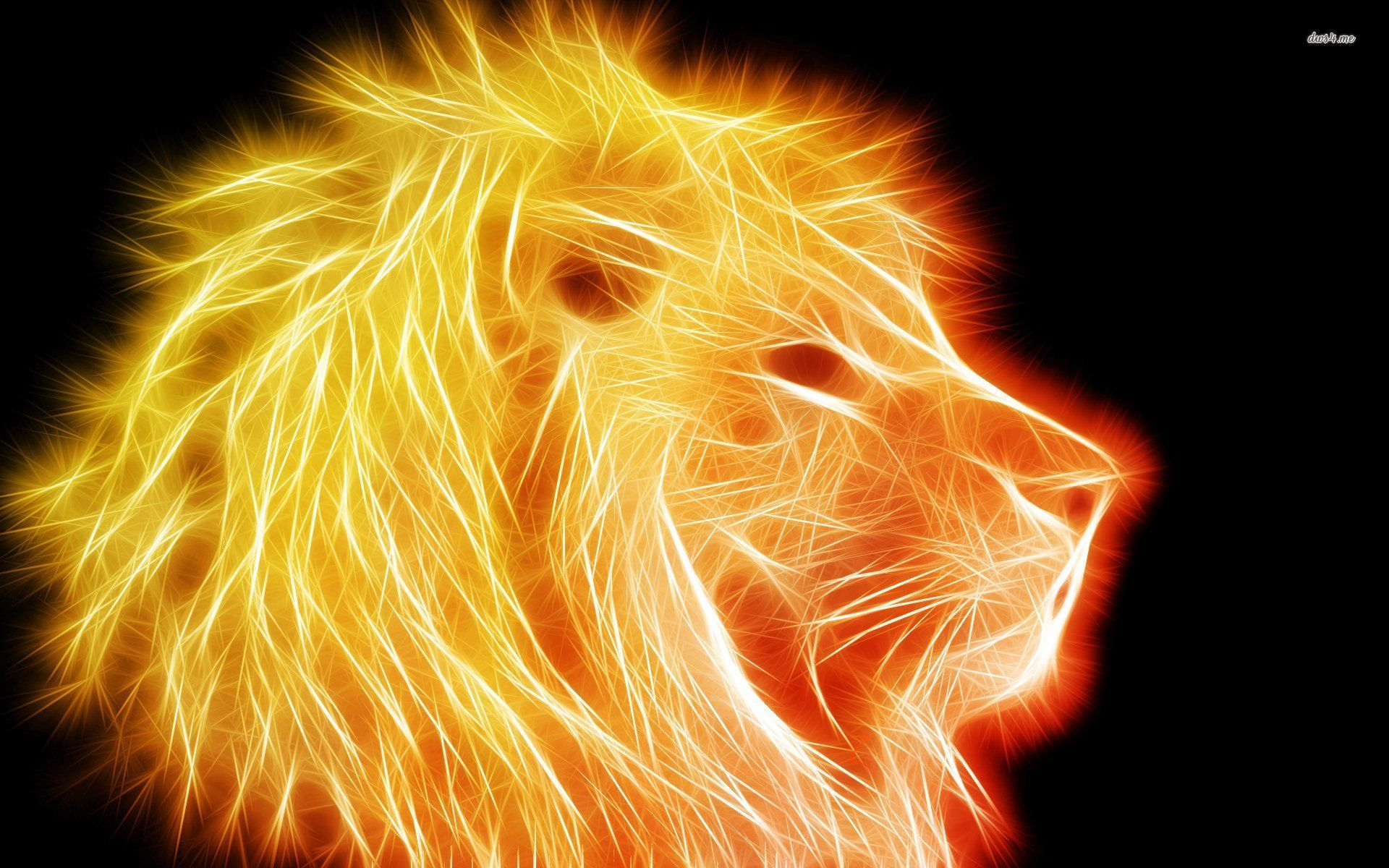 Glowing Golden Lion Wallpaper - Lion Hd Wallpaper Neon , HD Wallpaper & Backgrounds