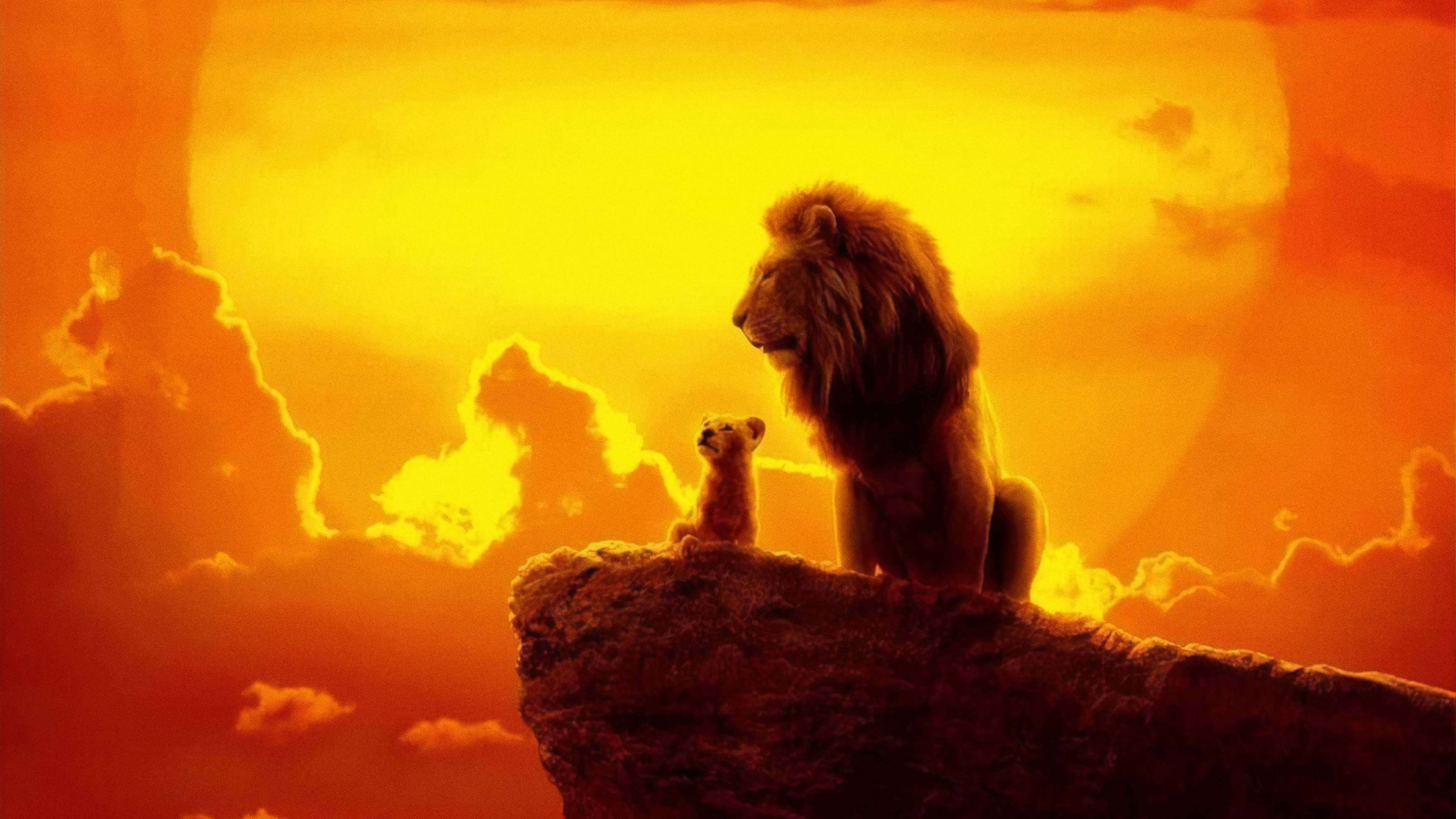 The Lion King 2019 4k - Lion King 2019 , HD Wallpaper & Backgrounds