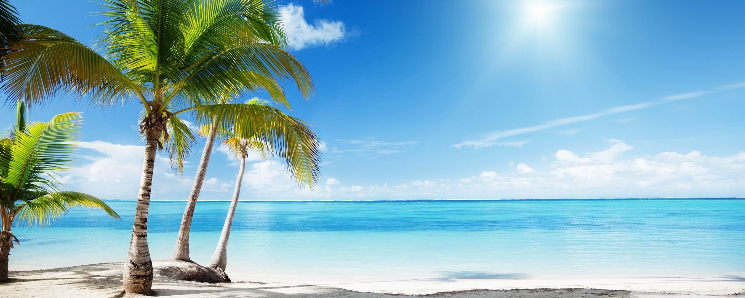 Tropical Beach Paradise Hd Desktop Wallpaper Tropical