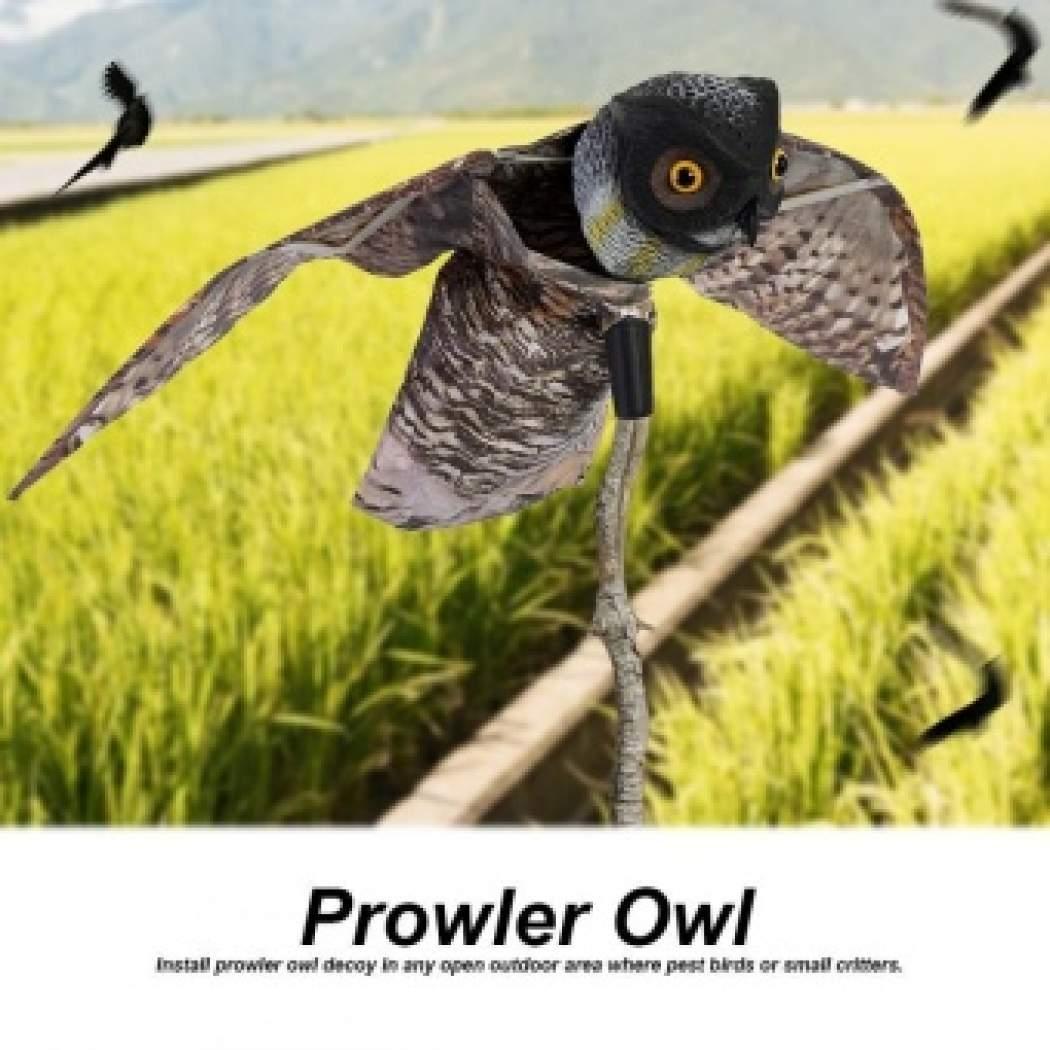 Cek Harga Pencuri Burung Hantu Scarer Burung Dengan
