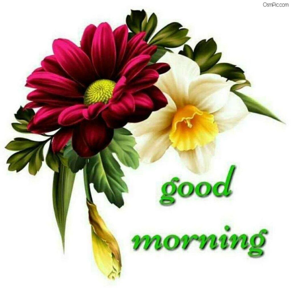 New Flower Wallpaper Good Morning