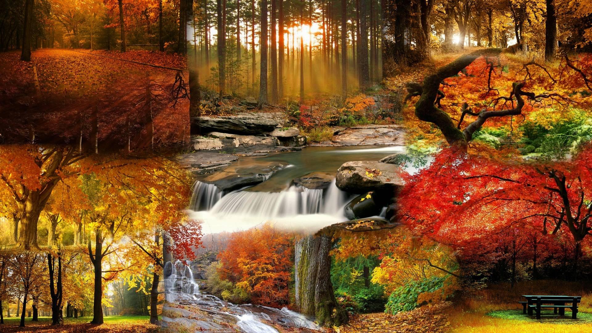 Beautiful Landscape Wallpaper - Beautiful Fall Landscape , HD Wallpaper & Backgrounds