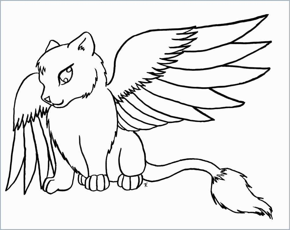 Related Post - Animal Cute Coloring Pages , HD Wallpaper & Backgrounds