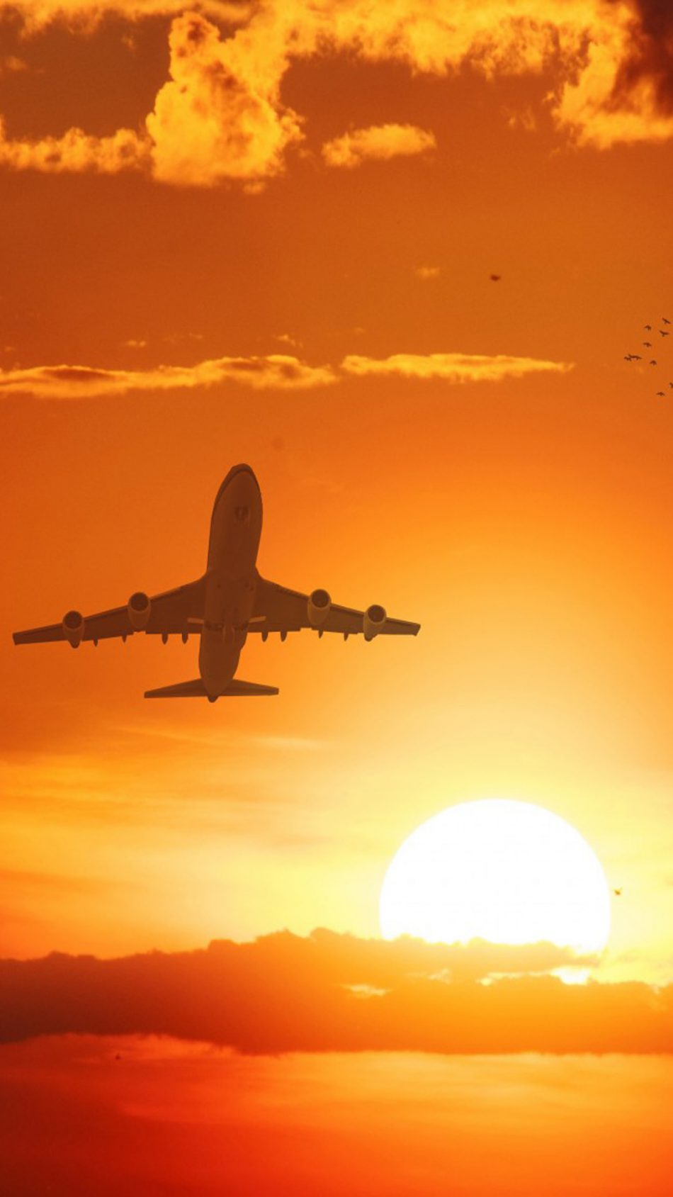 Airplane Flight Sunset Clouds Hd Mobile Wallpaper