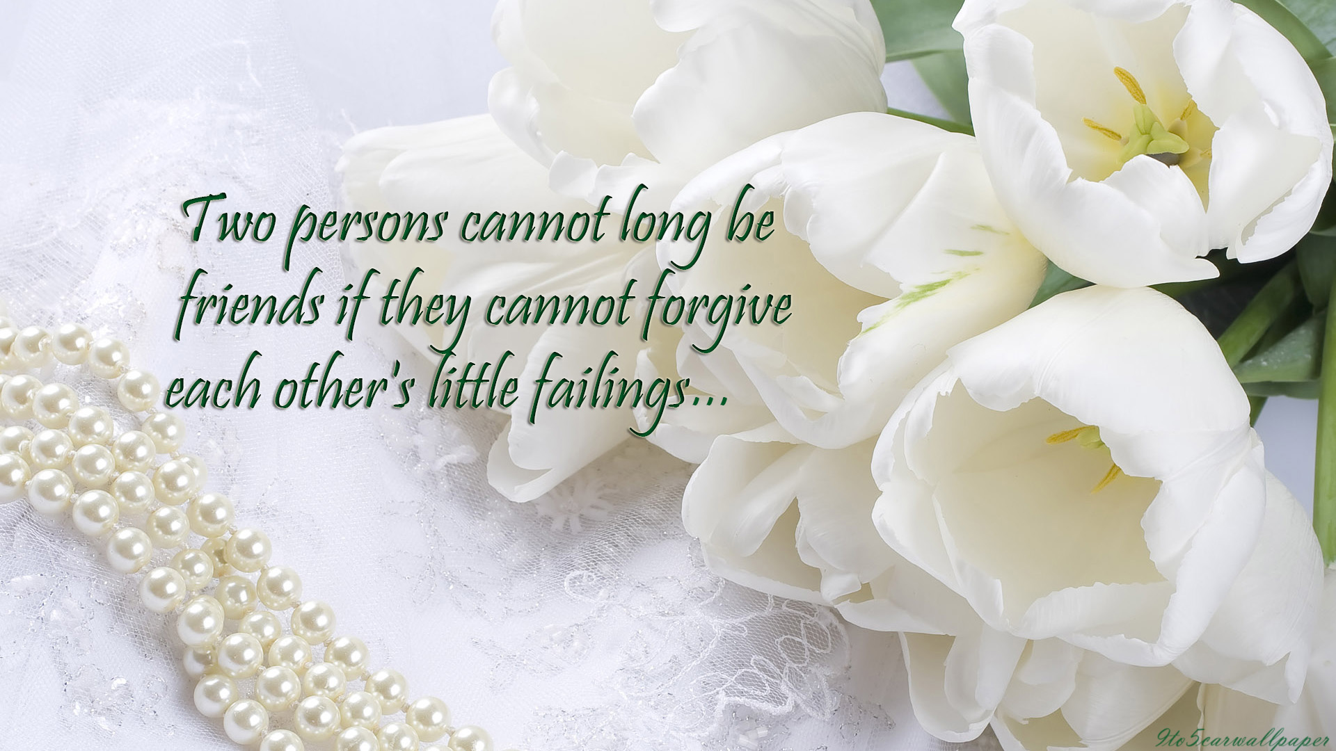 beautiful lovely friendship quotes images high definition