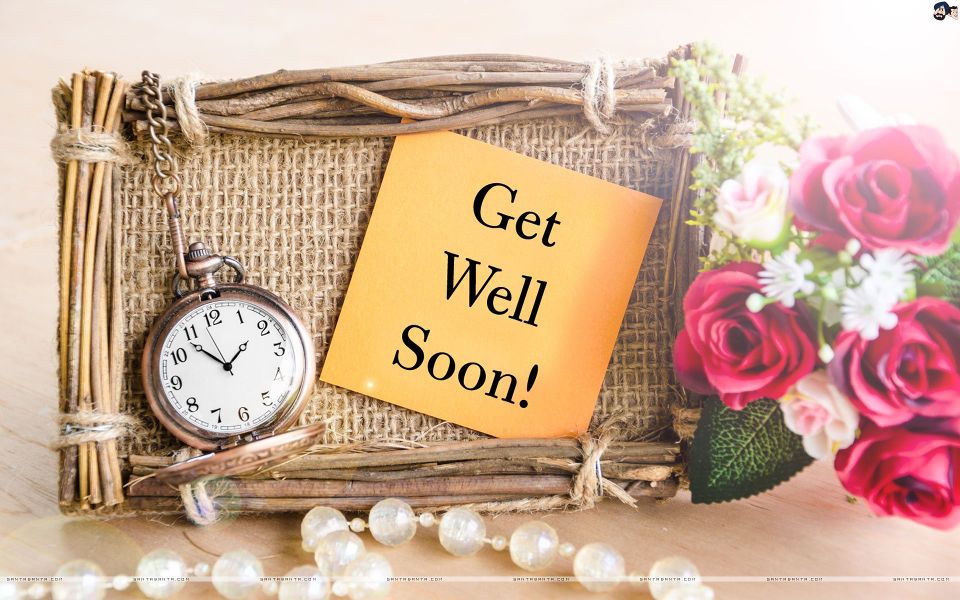 Get Well Soon - Rose Get Well Soon , HD Wallpaper & Backgrounds