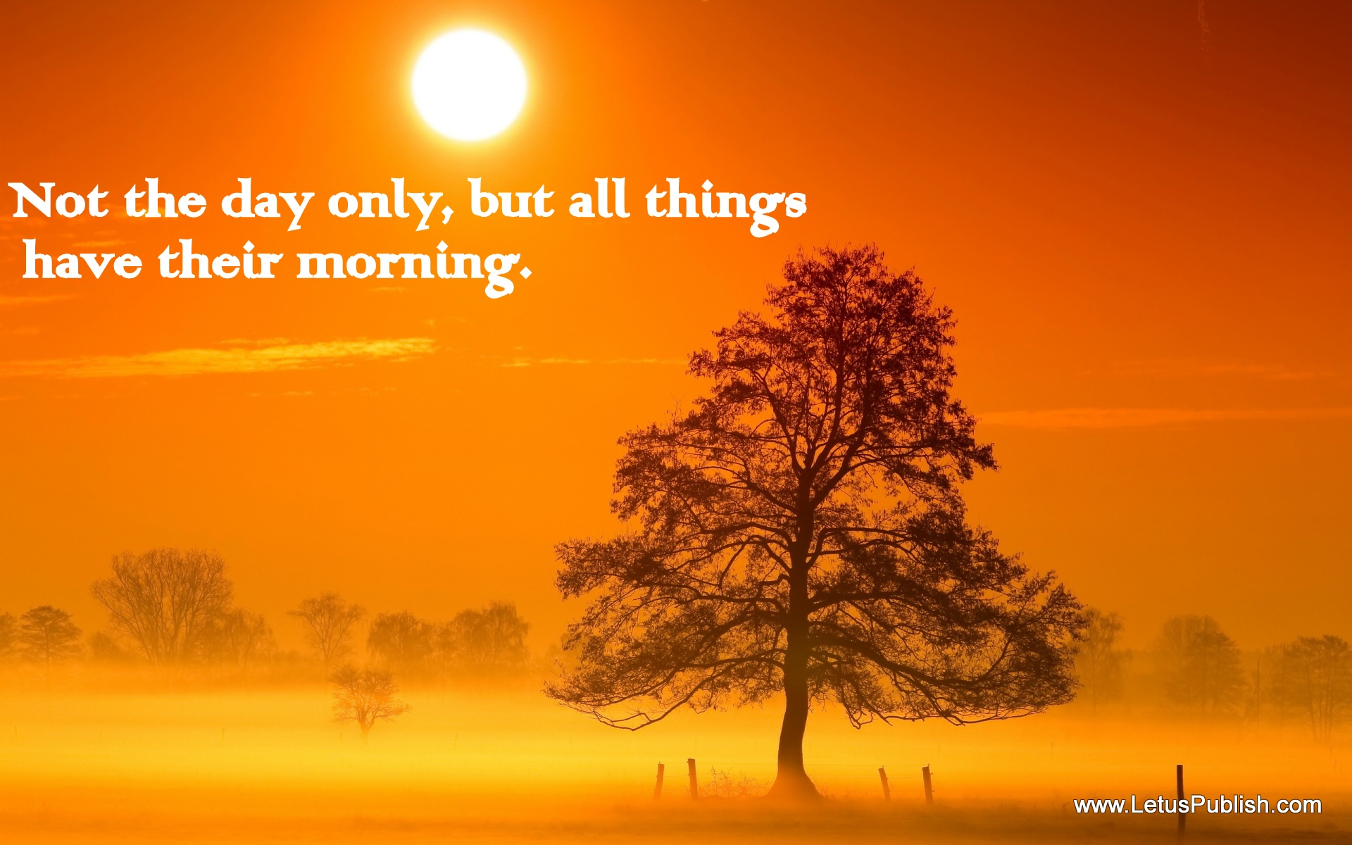 Good Morning Coffee Wallpaper With Quotes Sun Rise - Good Morning God Quotes Hindi , HD Wallpaper & Backgrounds
