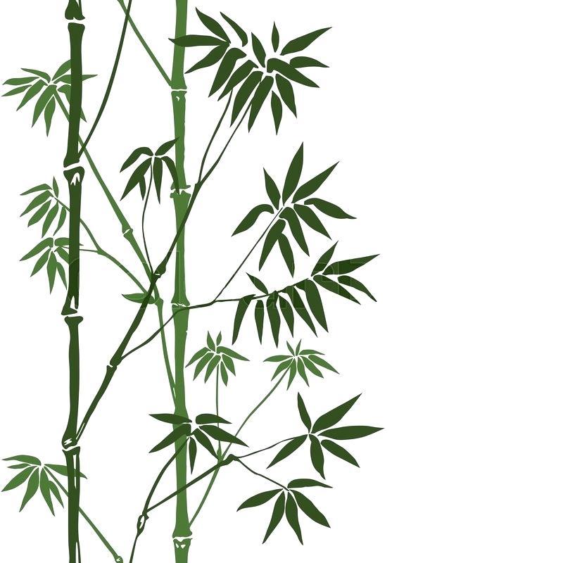 Green Bamboo Seamless Vertical Border On White Background
