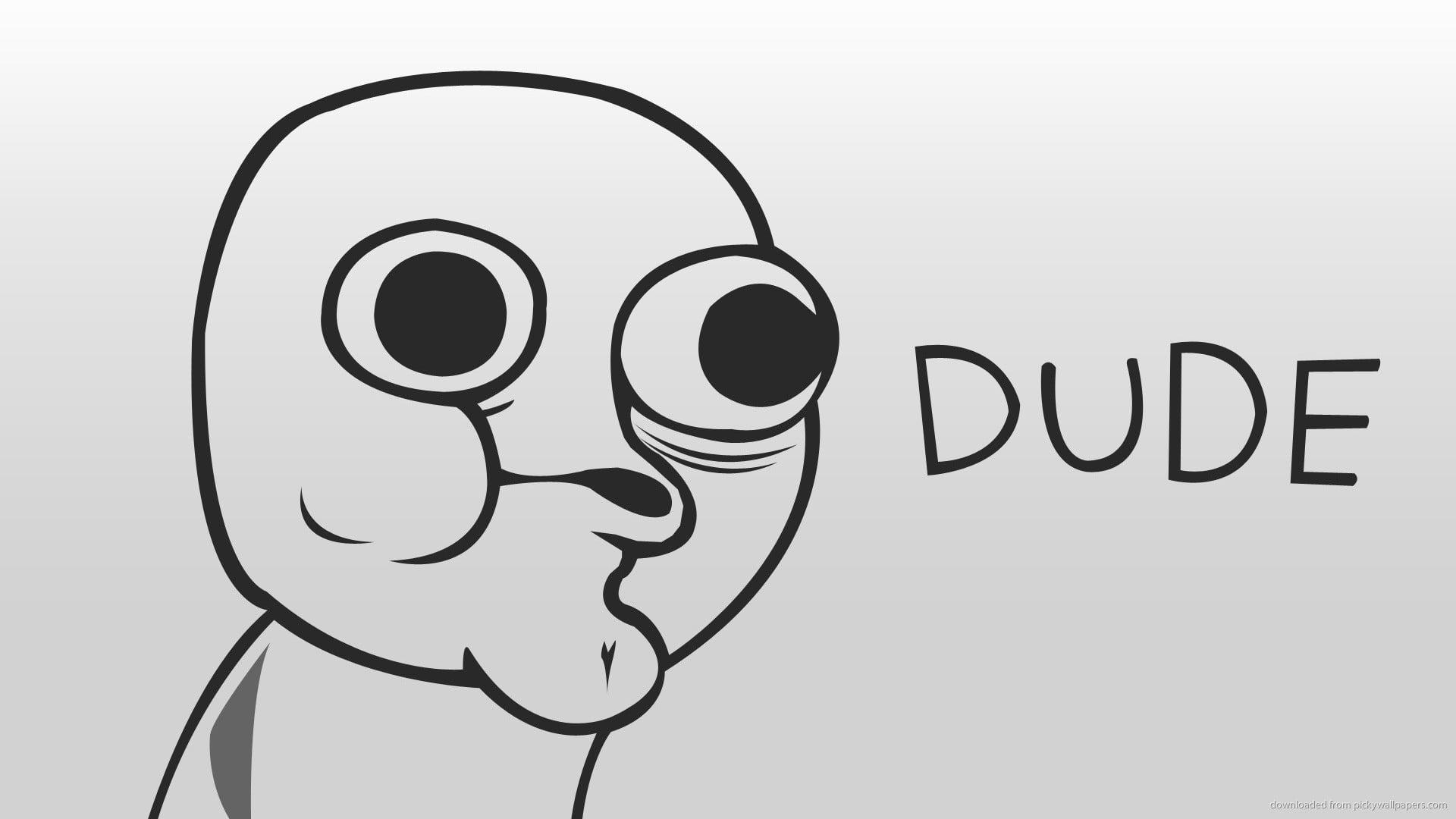Dude Troll Illustration, Dude, Cartoon, Typography - 1600 X 900 Wallpaper Memes , HD Wallpaper & Backgrounds