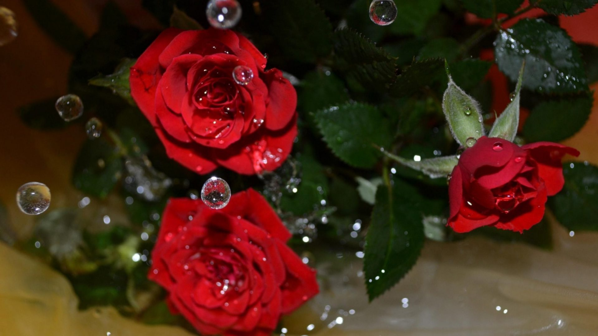 Nature Red Roses Earth Petals Rose Flowers Free Desktop - Flowers With Water Droplets Hd , HD Wallpaper & Backgrounds