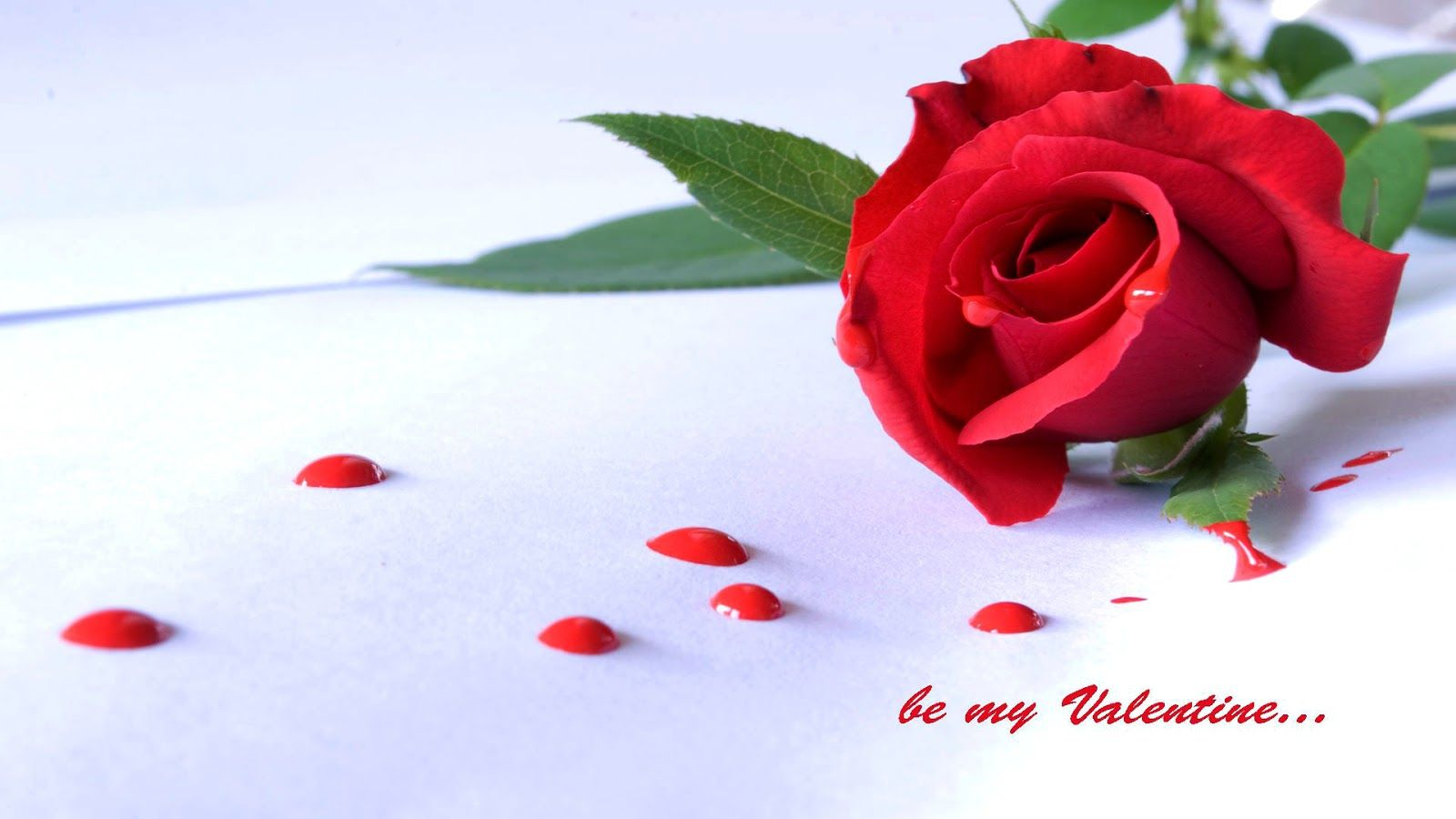 Happy Rose Day Wallpapers Hd Download Free 1080p - Gulab I Love You , HD Wallpaper & Backgrounds
