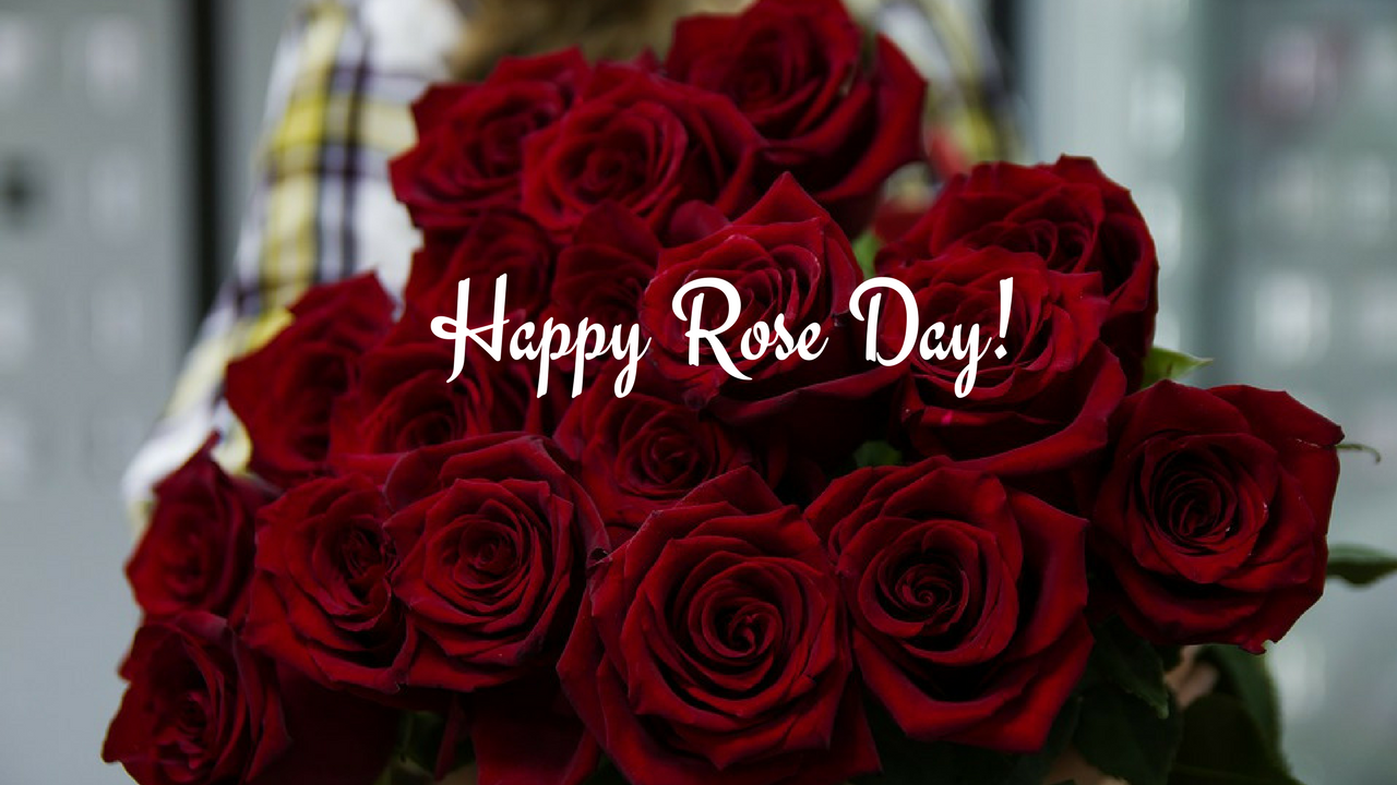 Happy Rose Day Wallpapers Happy Rose Day Images With - Rose Day Quotes For Boyfriend , HD Wallpaper & Backgrounds