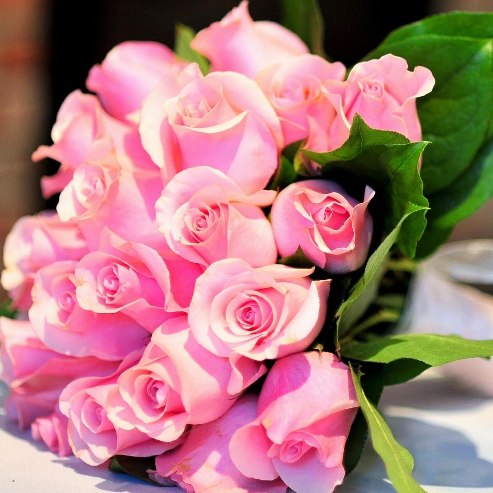 Happy Rose Day Most Beautiful Pink Flowers Hd Wallpapers