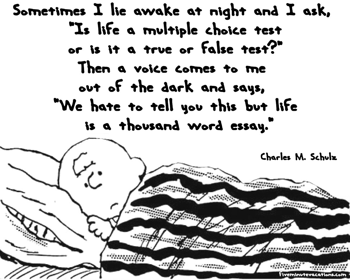 Cartoon Quotes Charlie Brown Quotes Hd Background I M