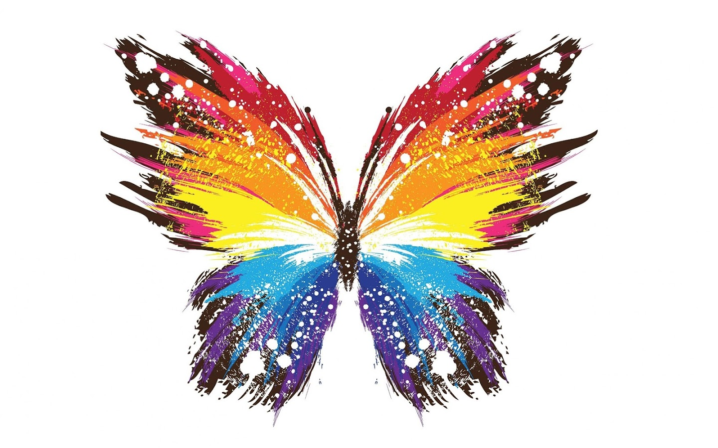 Butterfly Live Wallpaper - Colourful Wallpaper For Laptop , HD Wallpaper & Backgrounds