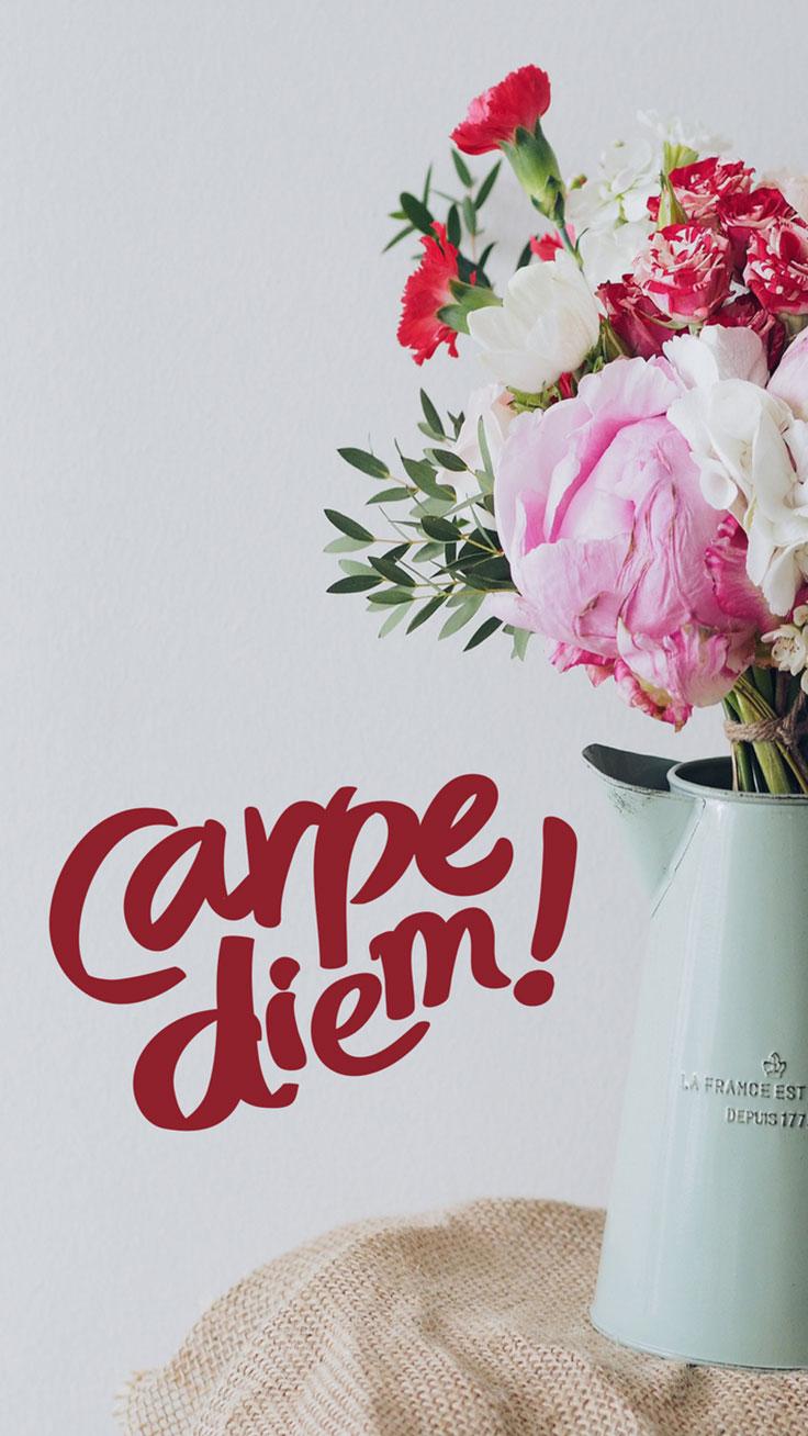 carpe diem quote flowers iphone tap to fondos de