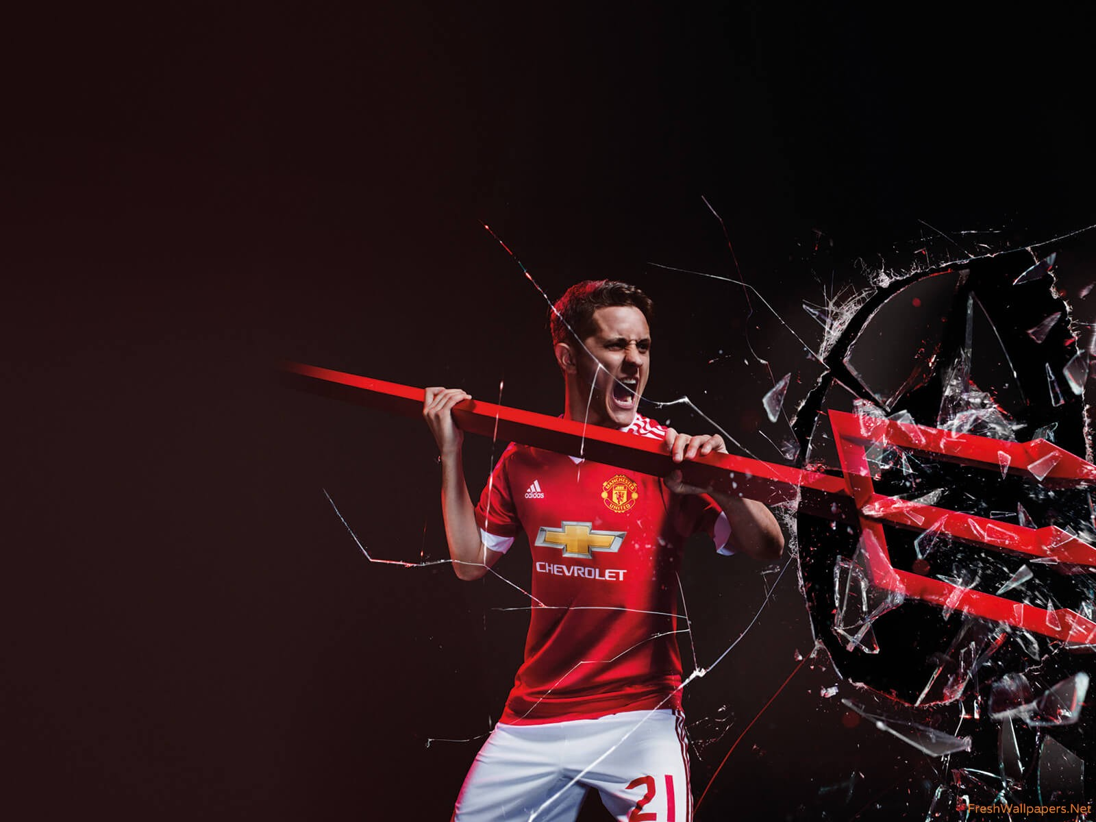 Ander Herrera 2015 2016 Man Utd Adidas Home Kit Wallpaper