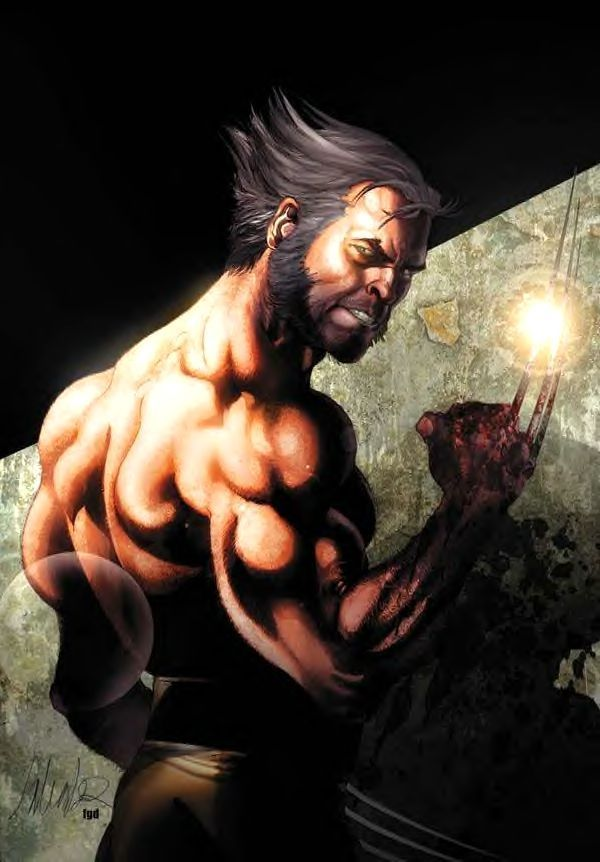 Wolverine High Resolution Wallpapers For Pc & Mac, - Wolverine Weapon X , HD Wallpaper & Backgrounds