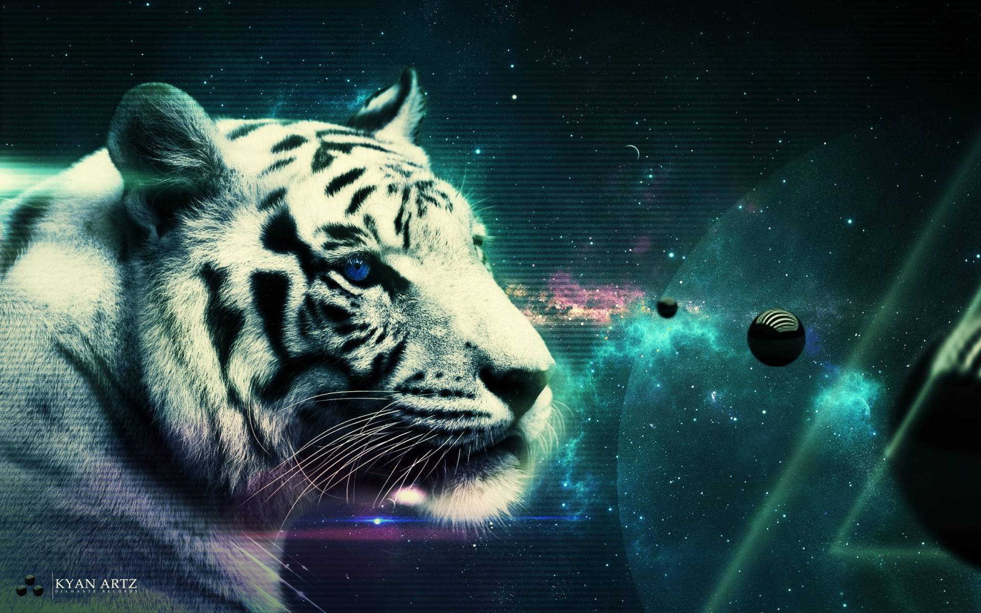 62 628370 3d tiger live wallpaper download white tiger in