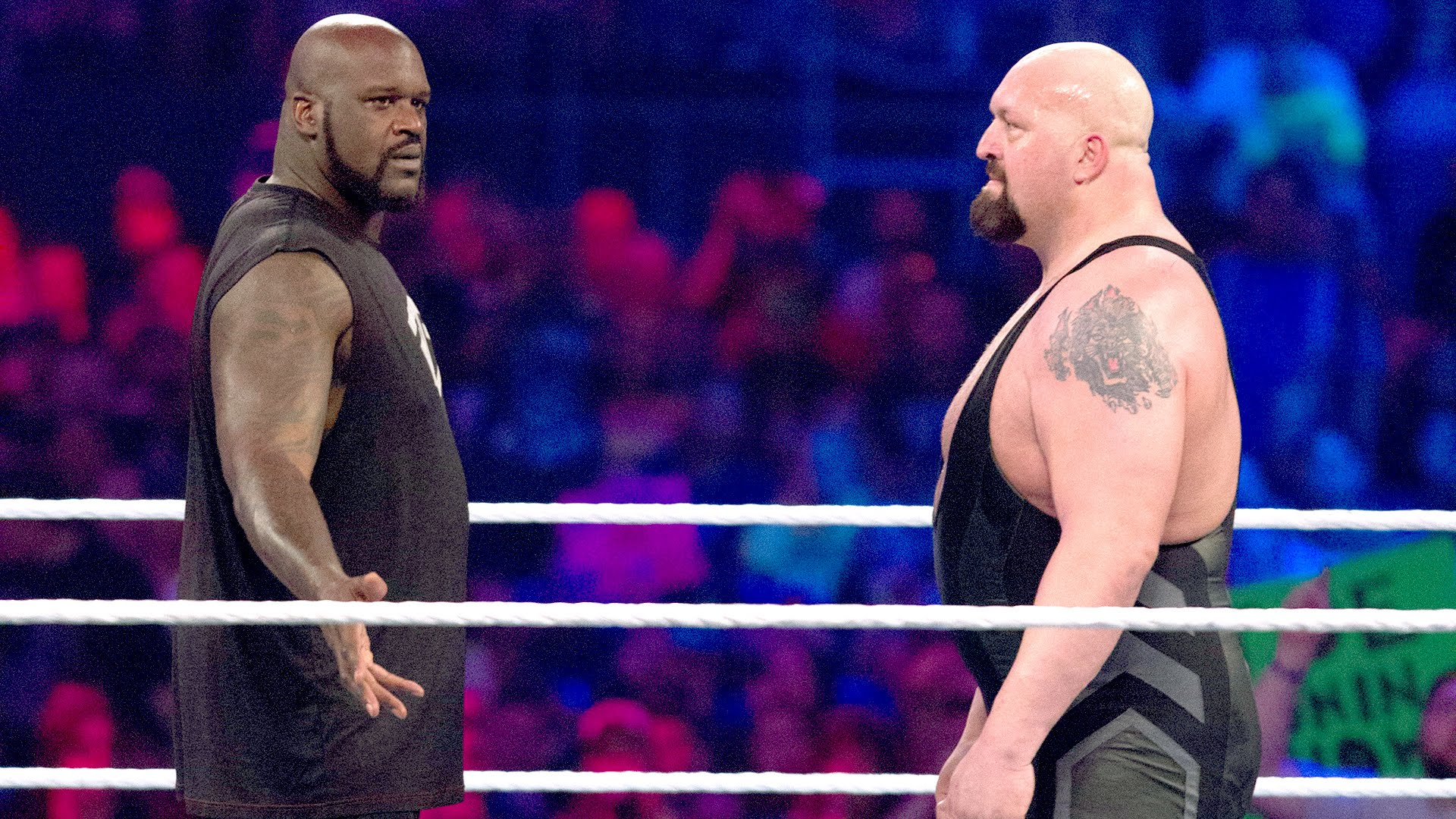 Big Show Has Been Wrestling For Over 20 Years Now, - Shaq Big Show , HD Wallpaper & Backgrounds