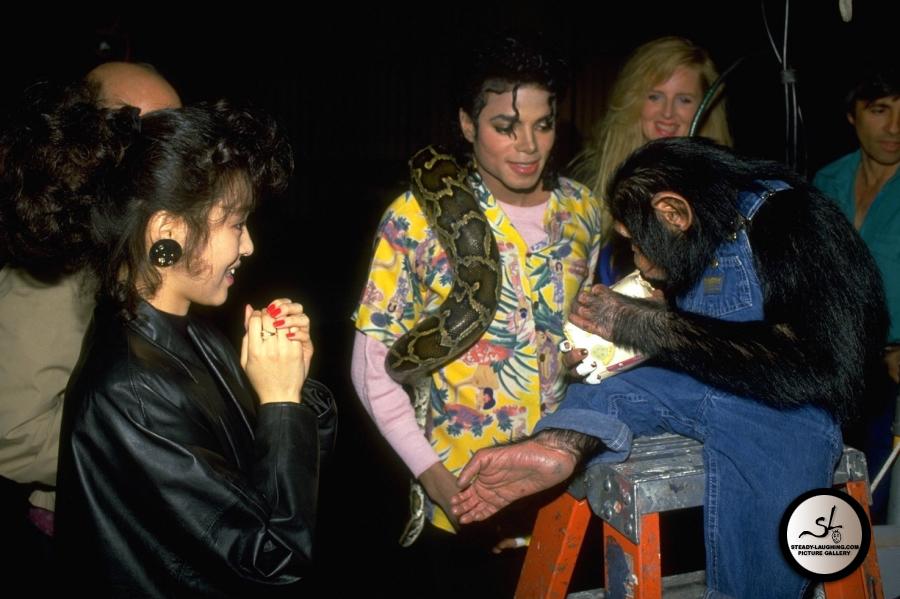 Leave Me Alone Images Michael & Bubbles / Leave Me - Michael Jackson And Bubbles Leave Me Alone , HD Wallpaper & Backgrounds